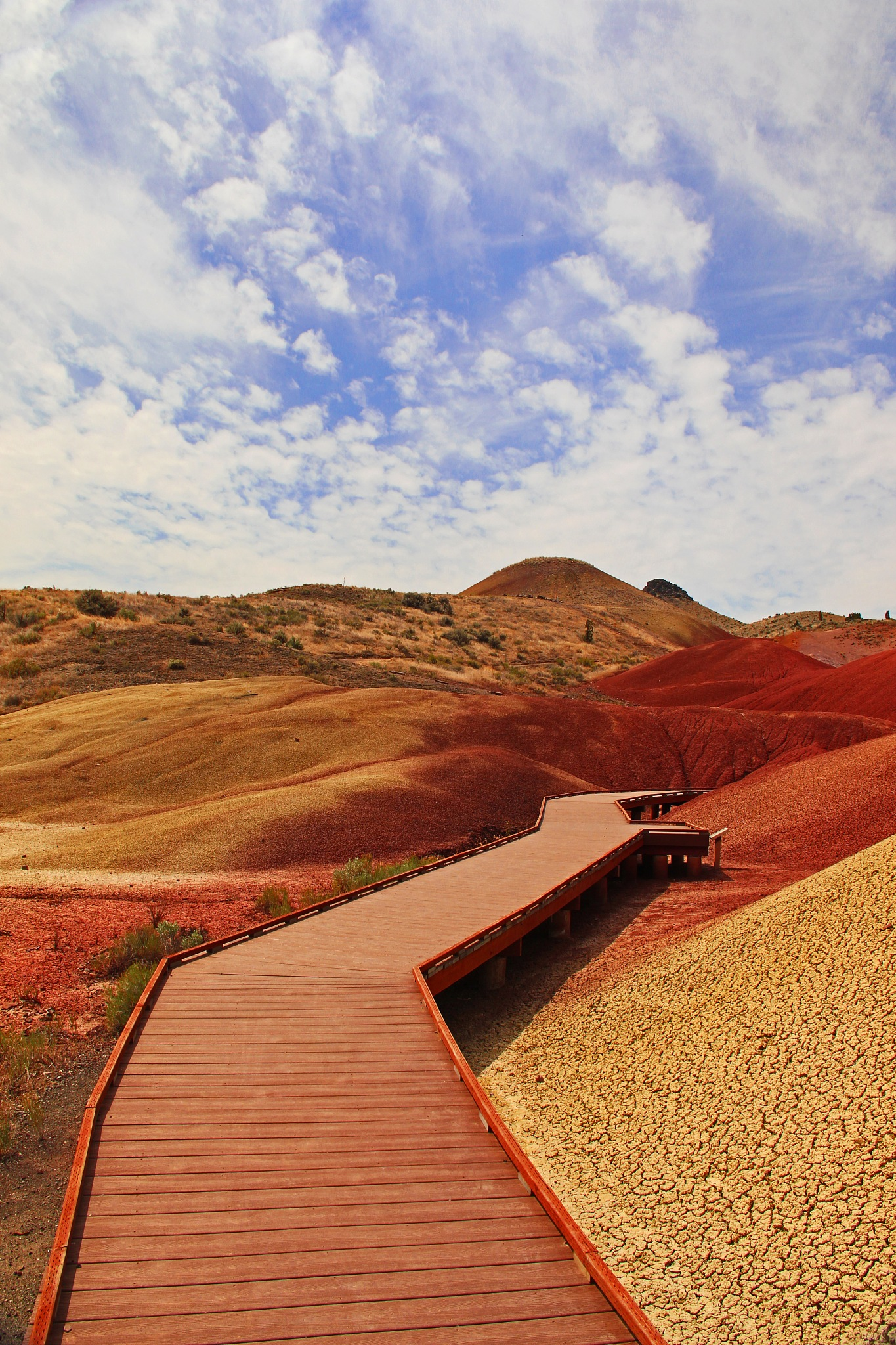 Painted Hills, Painted Cove by christena.anderson