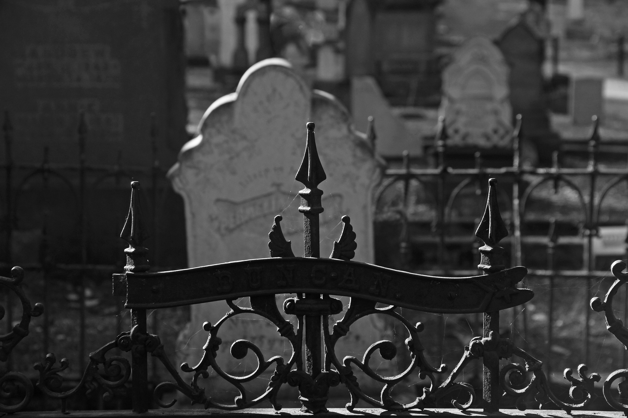 Jacksonville Cemetery Series 3 by christena.anderson