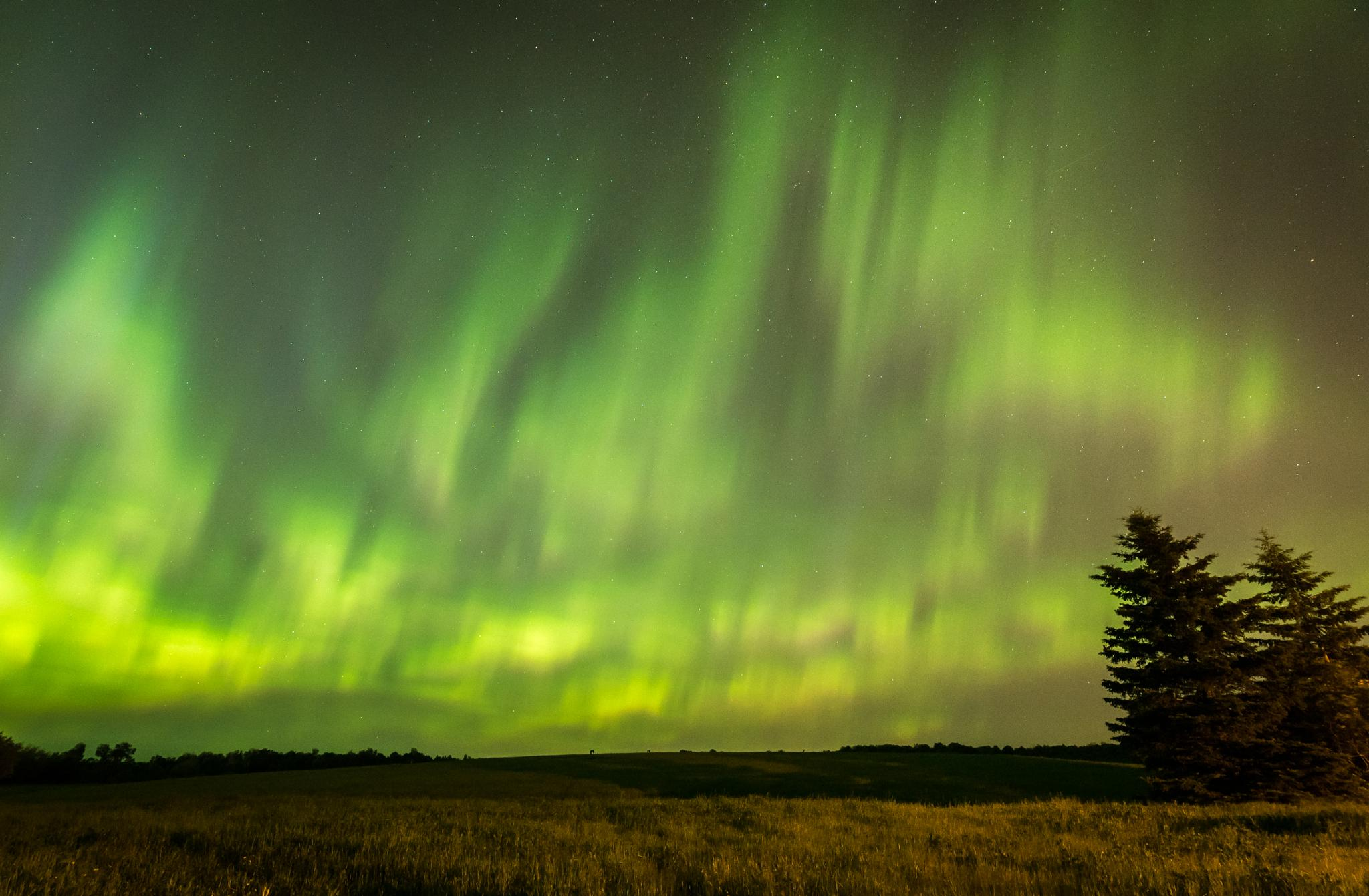 Northern Lights field on Fire by john.strongitharm