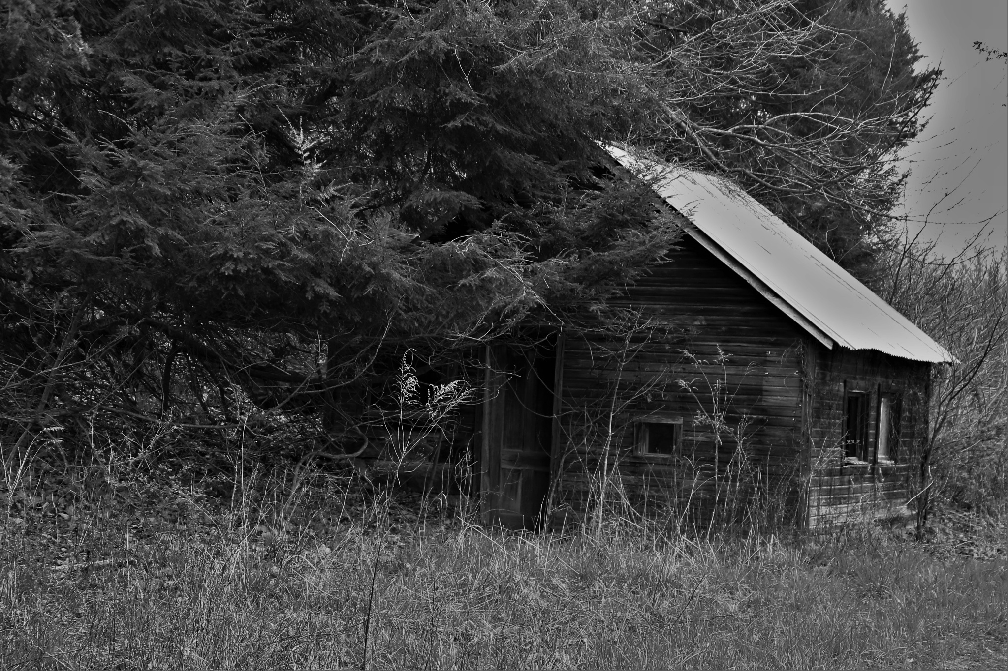 Old Farm Shed by robin.smith.3150