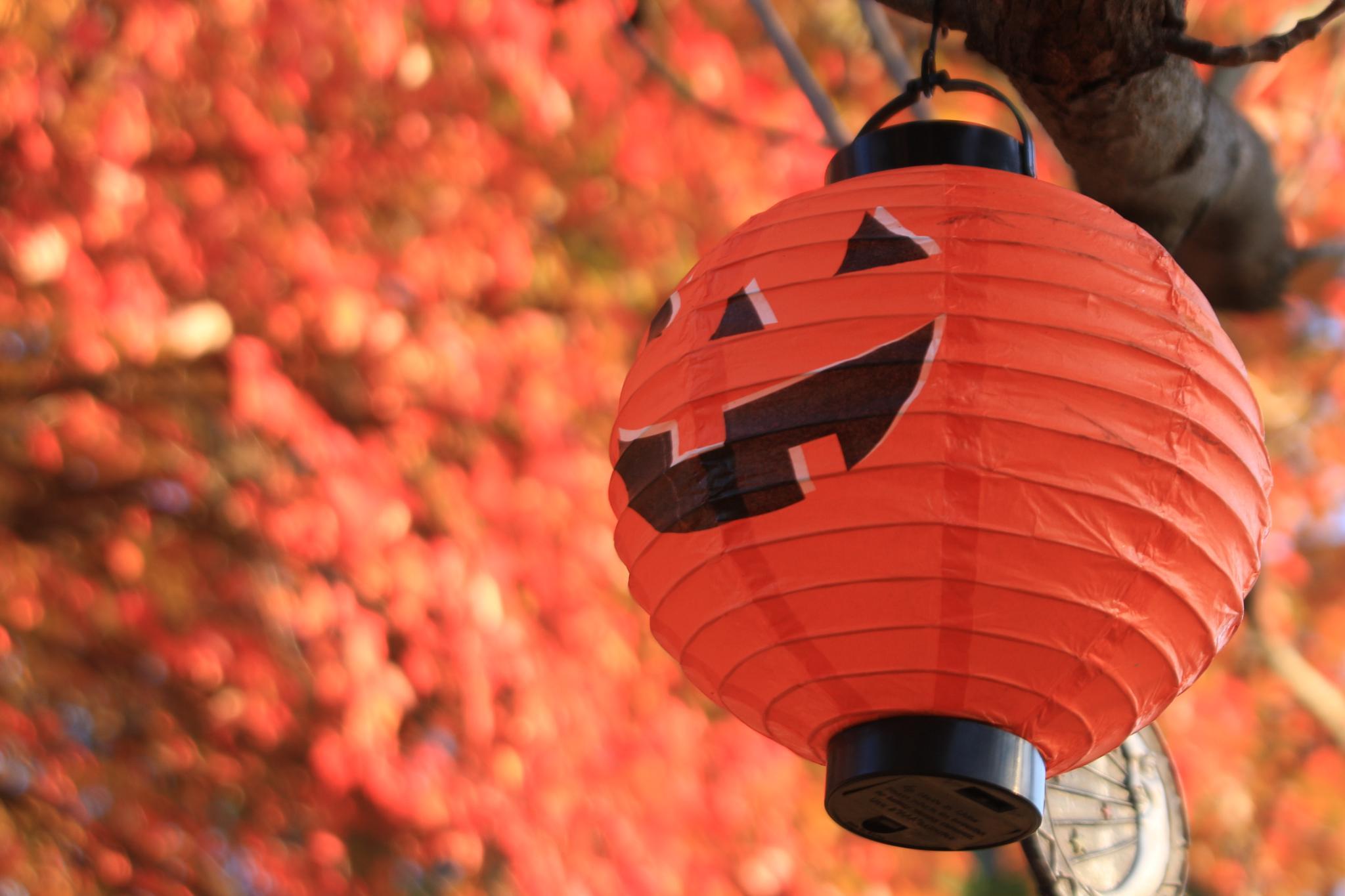 Happy Halloween by robin.smith.3150