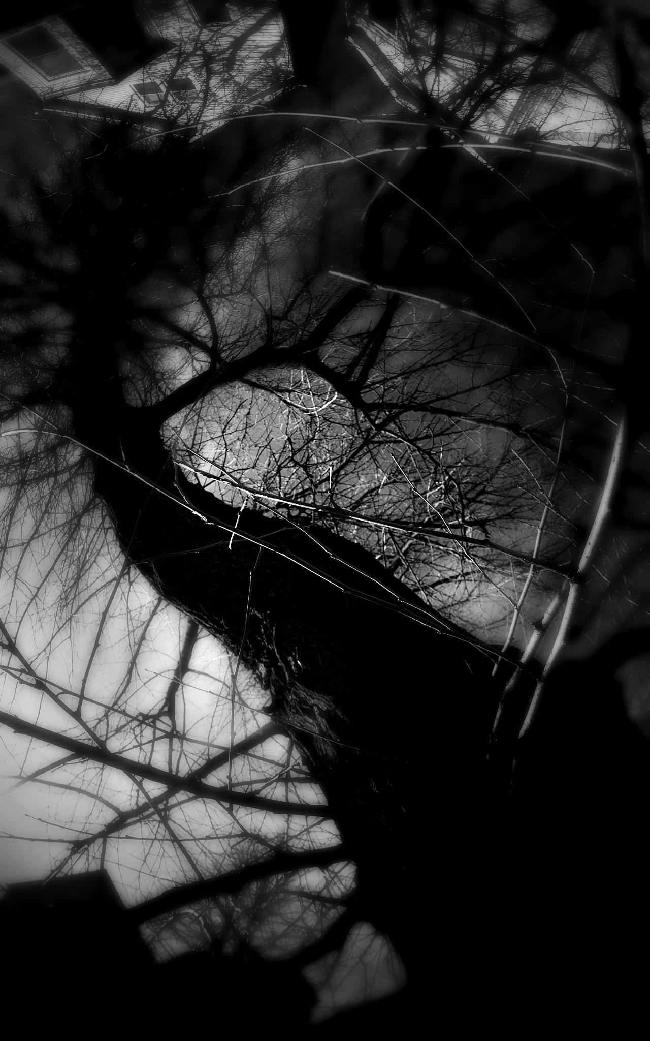 Untitled by David DeBord