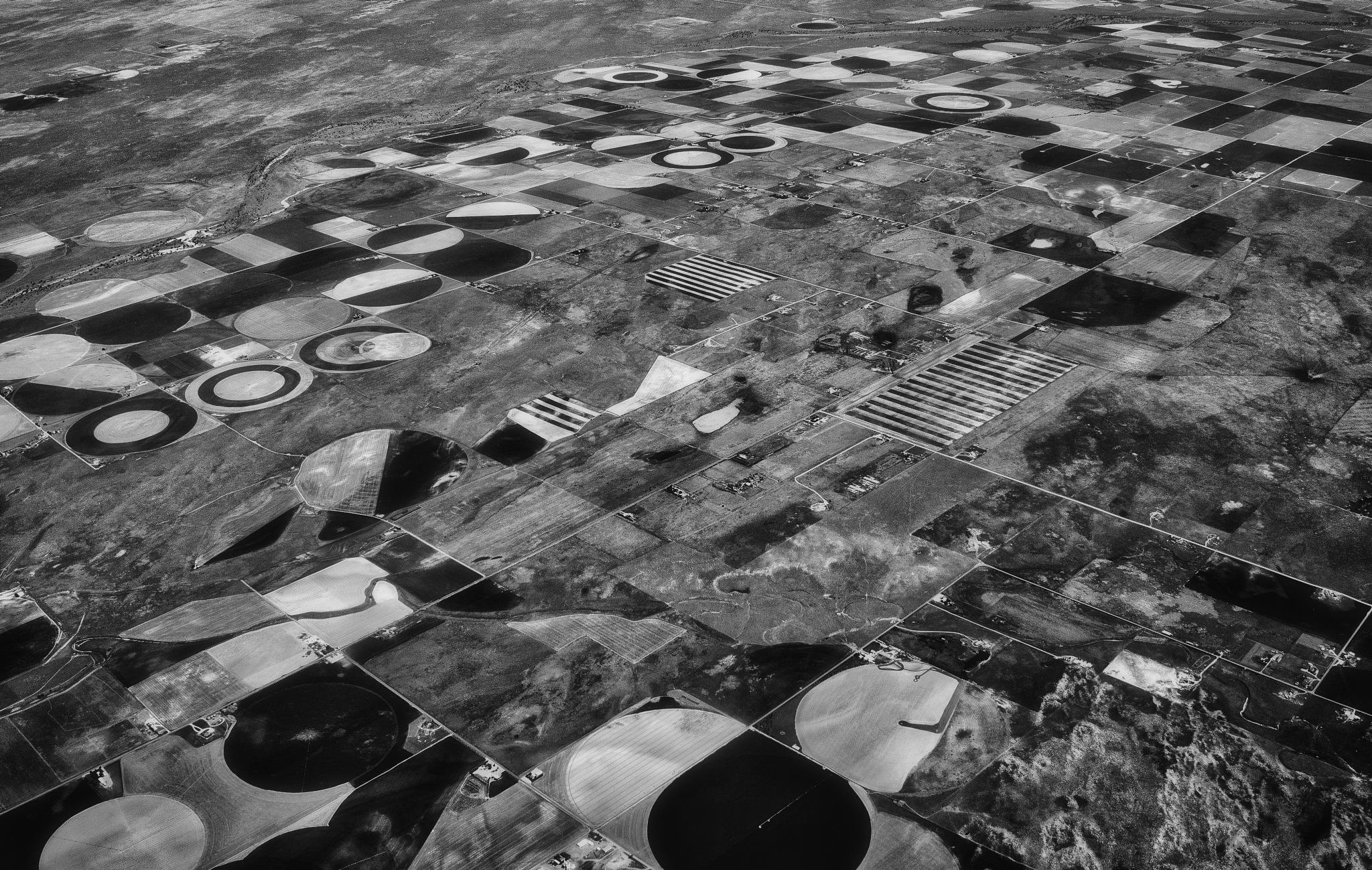 circles by David DeBord