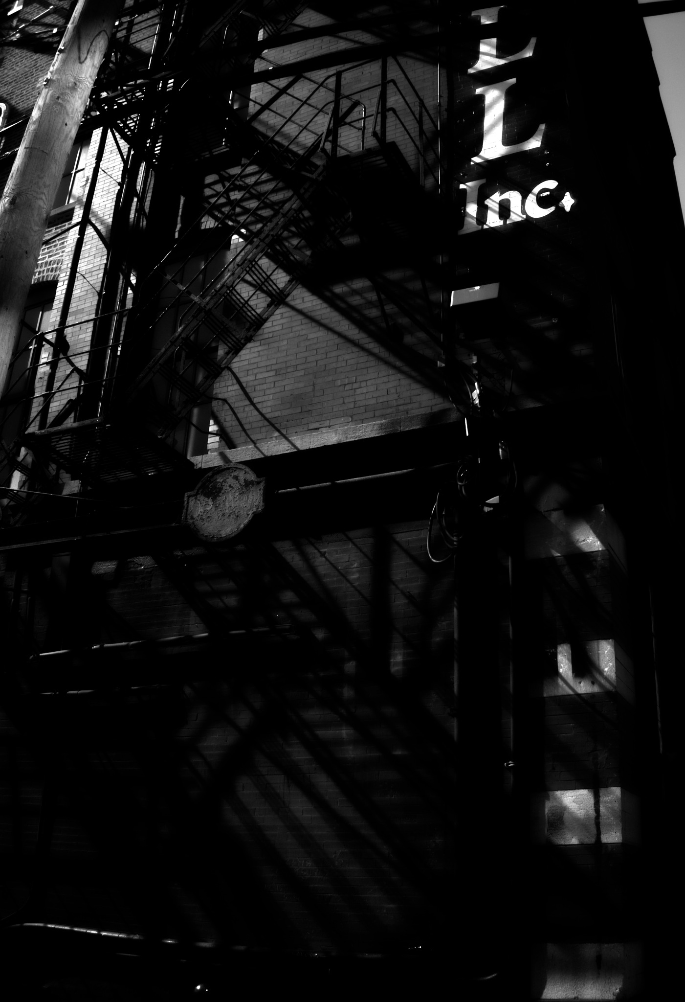 LL INC by David DeBord