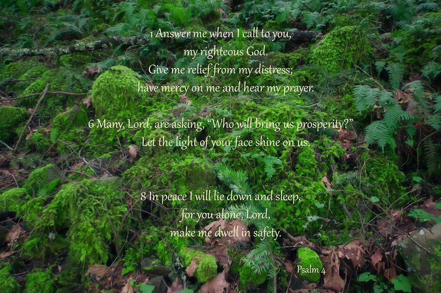 PSALM 4:1-6-8 by alexito.sate