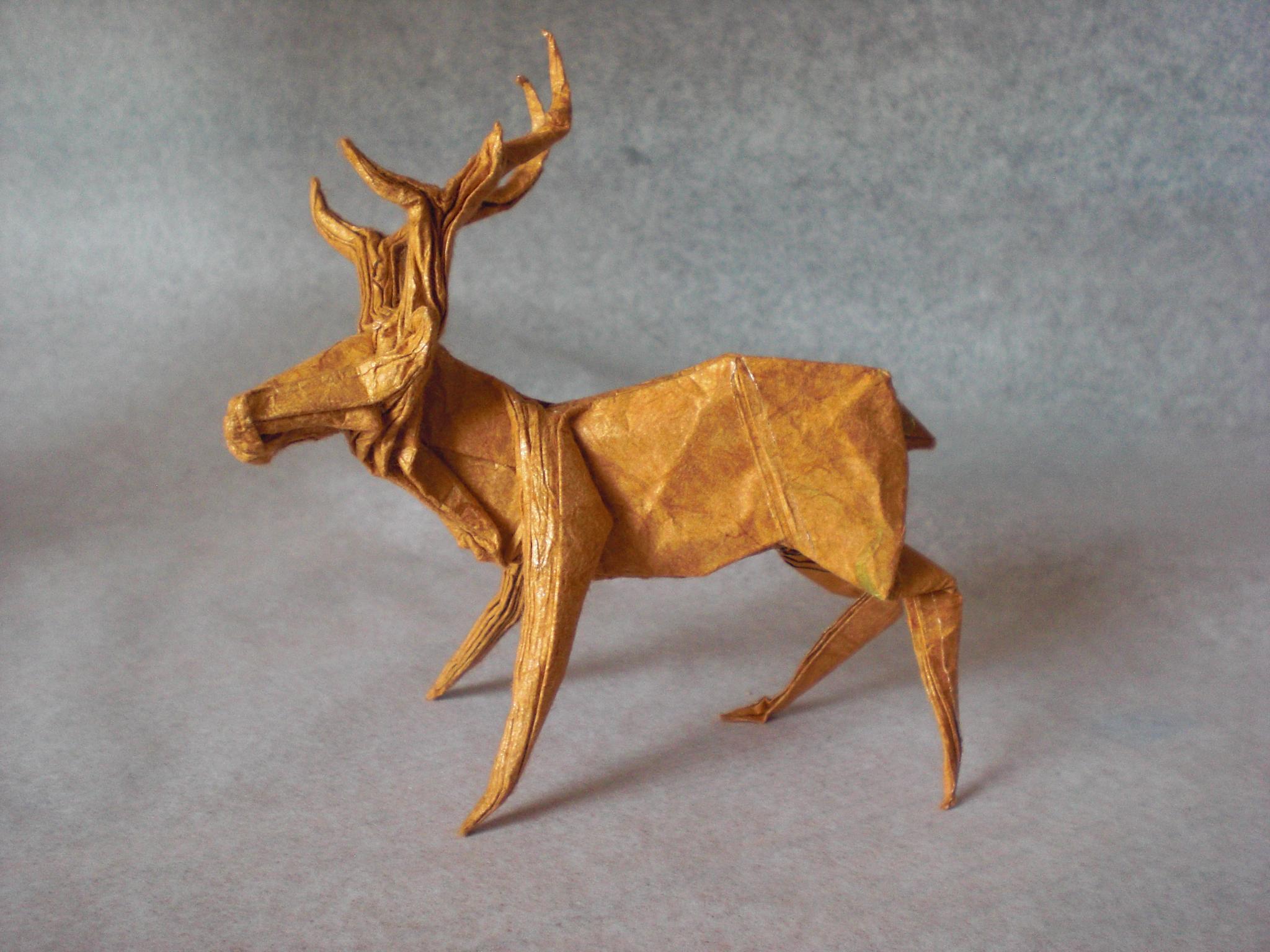 Deer by Andrés Lozano
