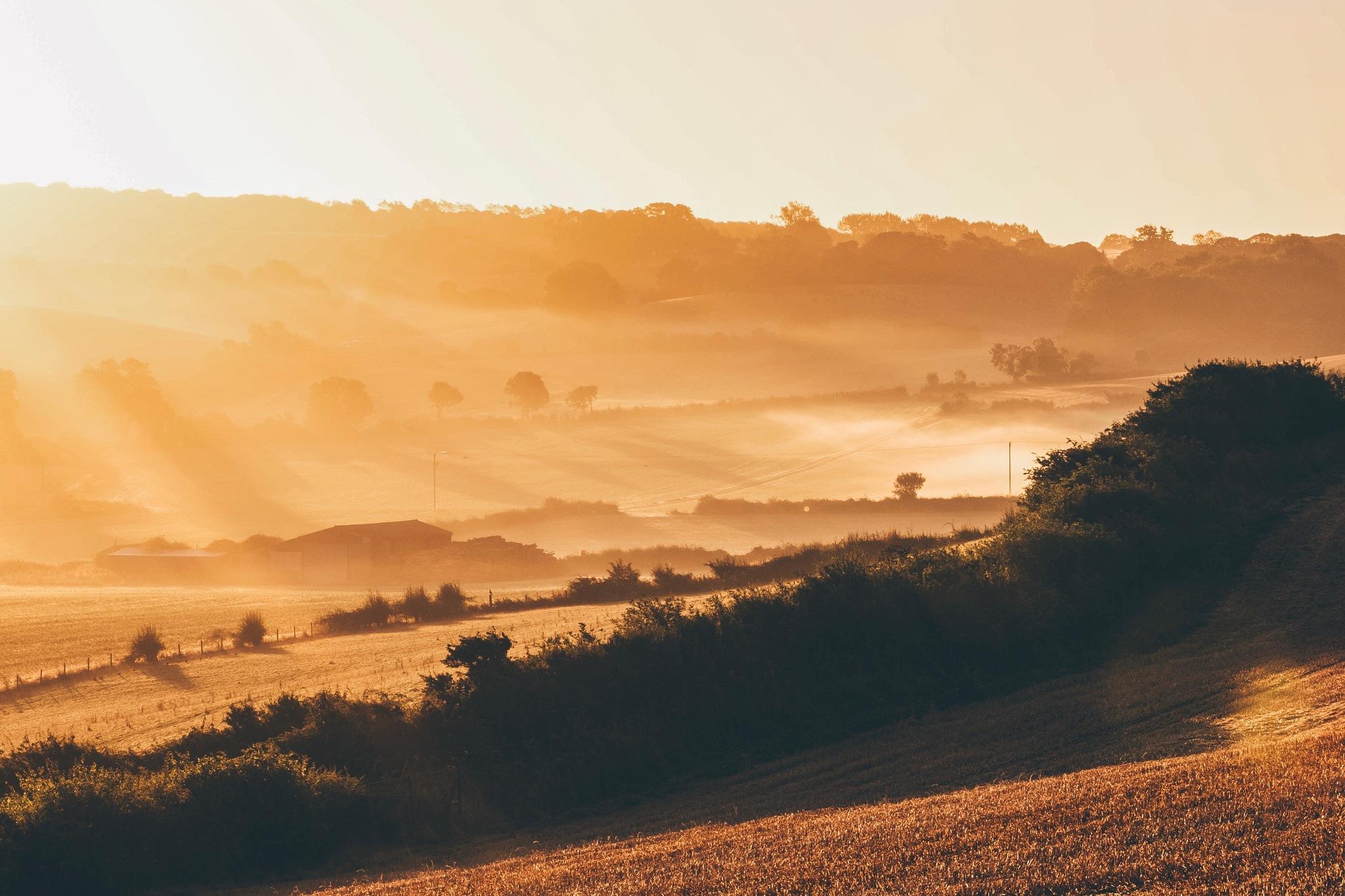 Dawn on the Weston hills by Adam Higgitt