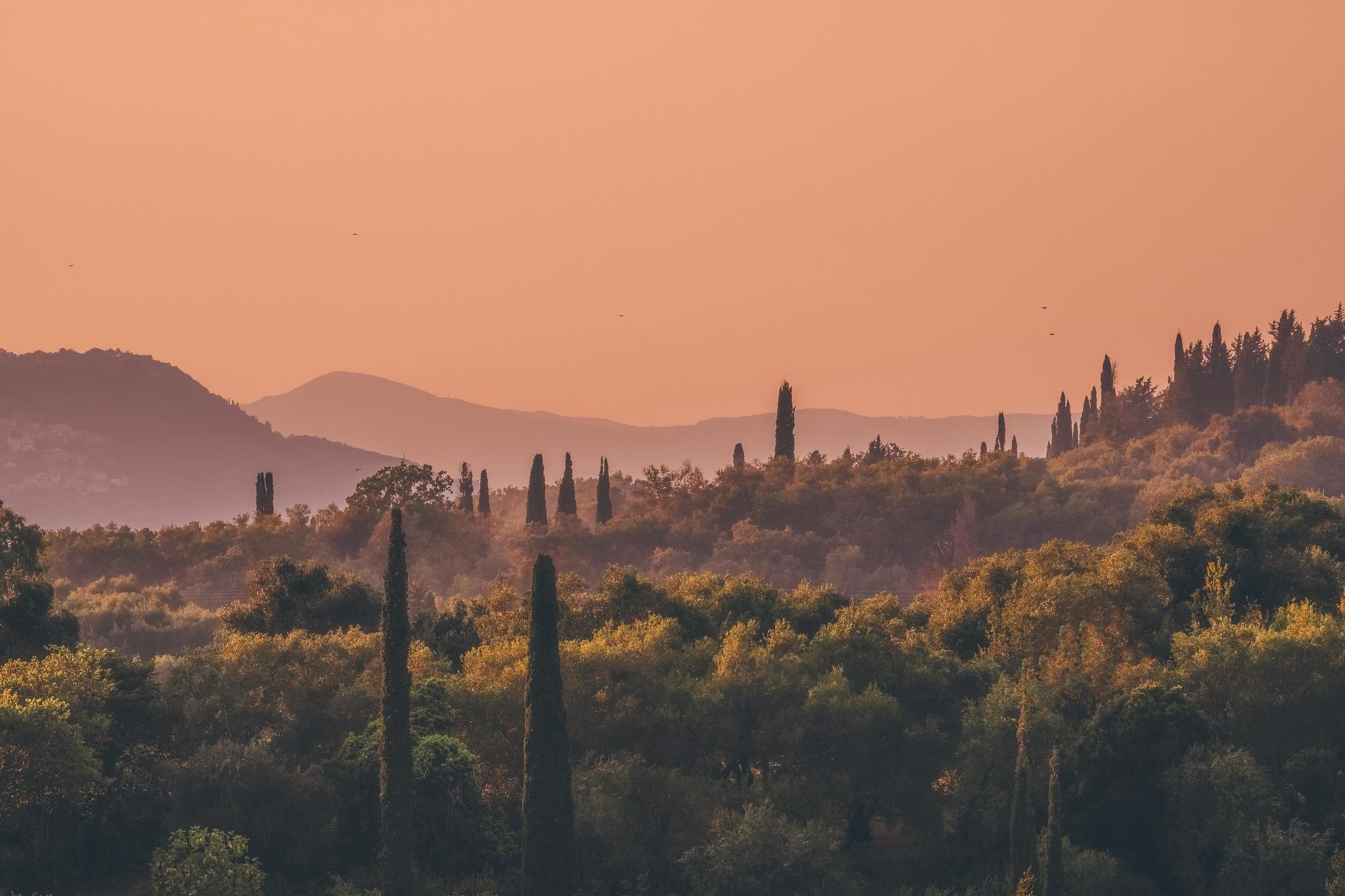 Central Corfu by Adam Higgitt