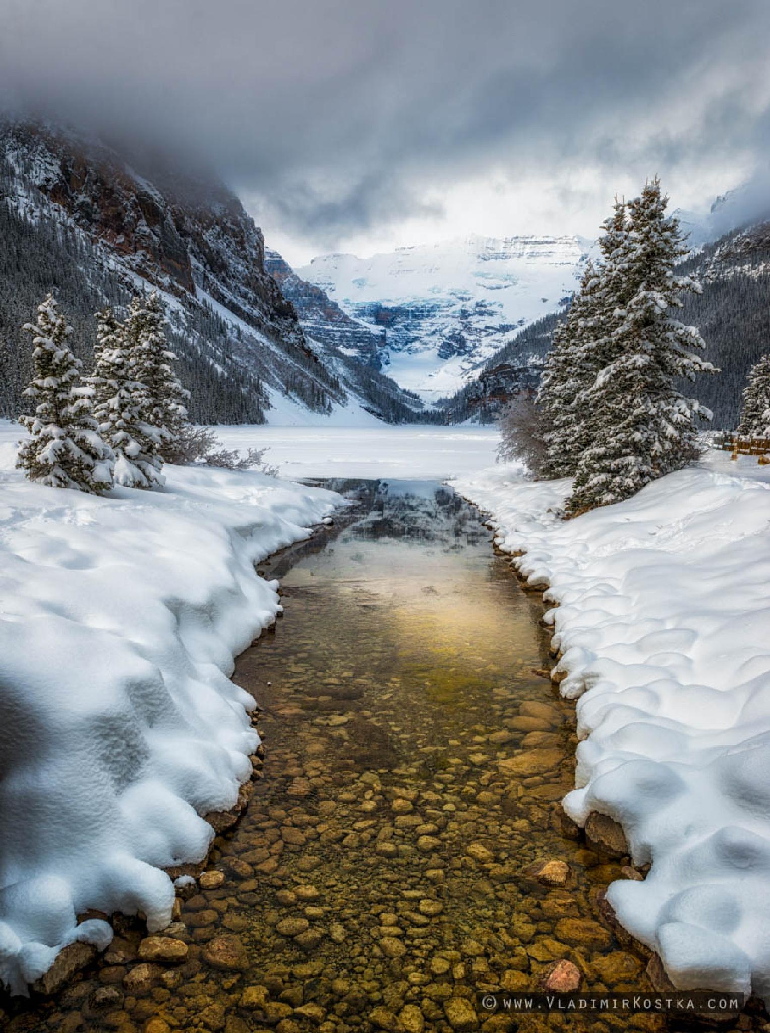 Winter Wonderland by vladkostka