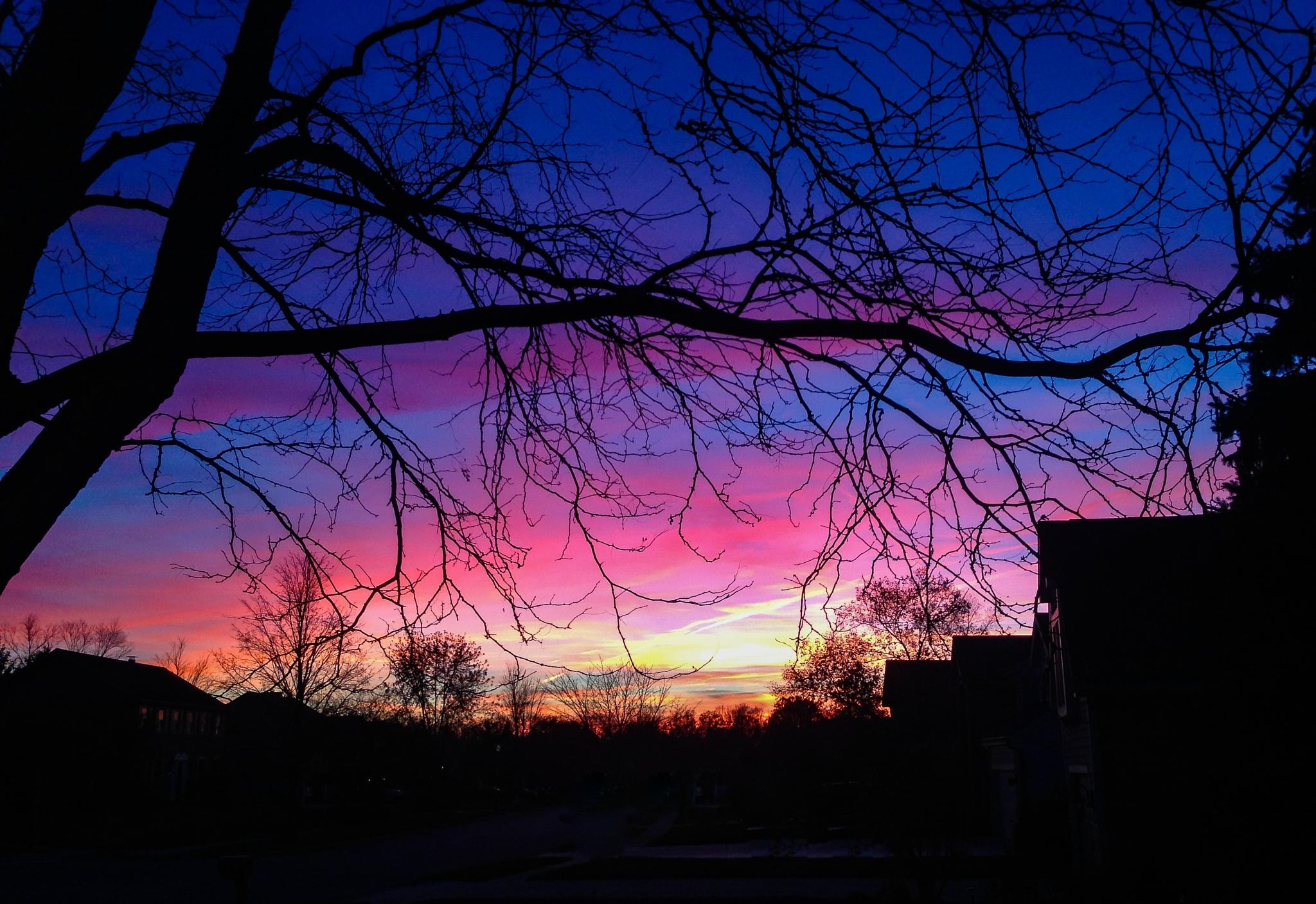 Sunset In Pink and Blue by lori.collinsherrmann
