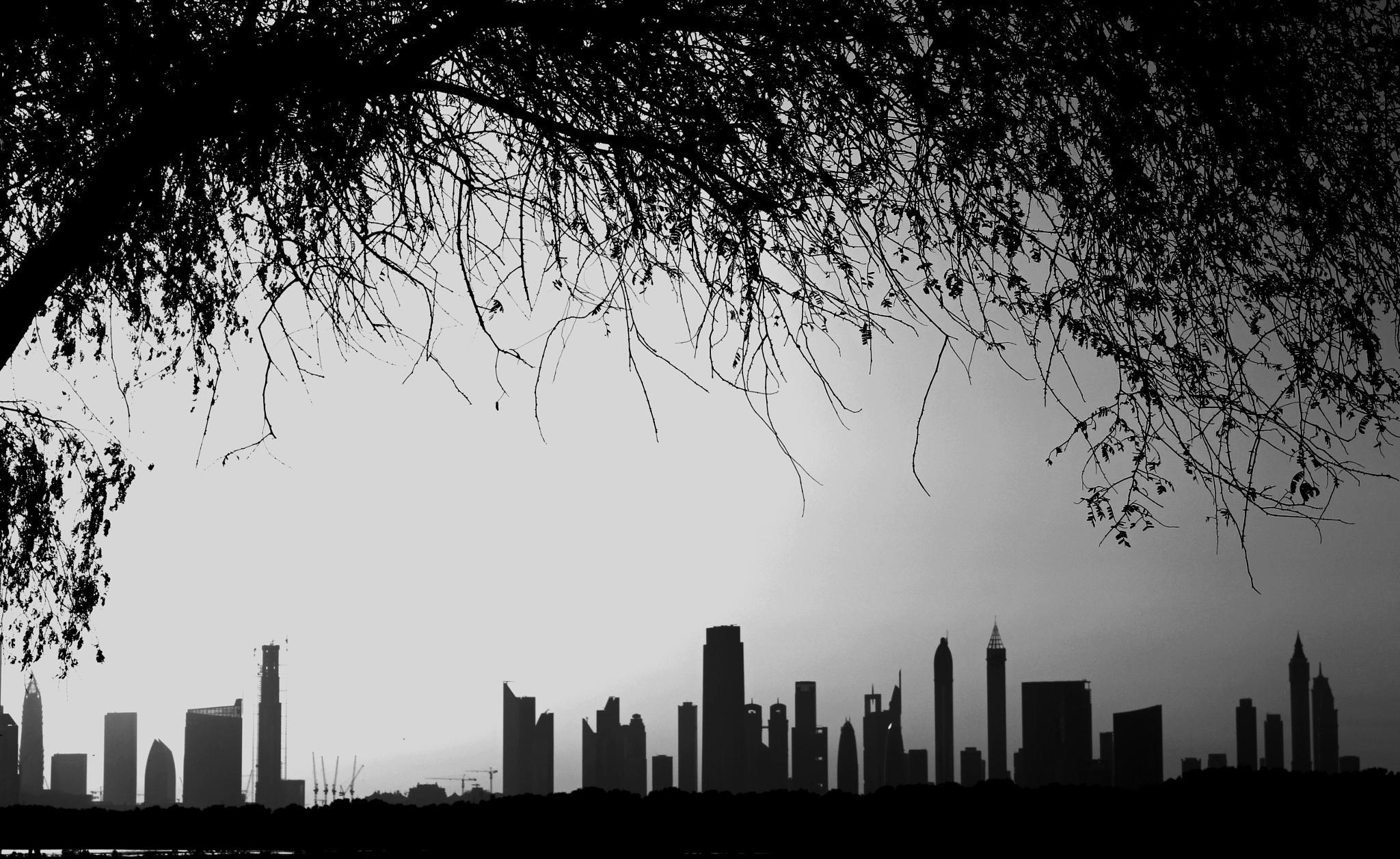 DUBAI by vahid82