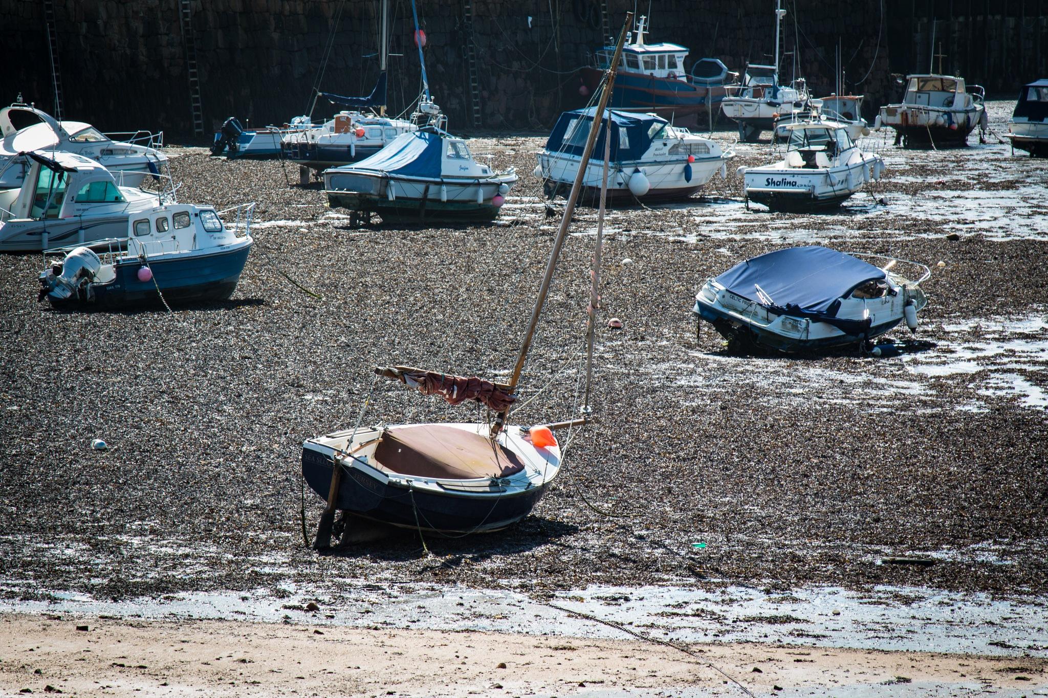 Boatyard by Allan Love
