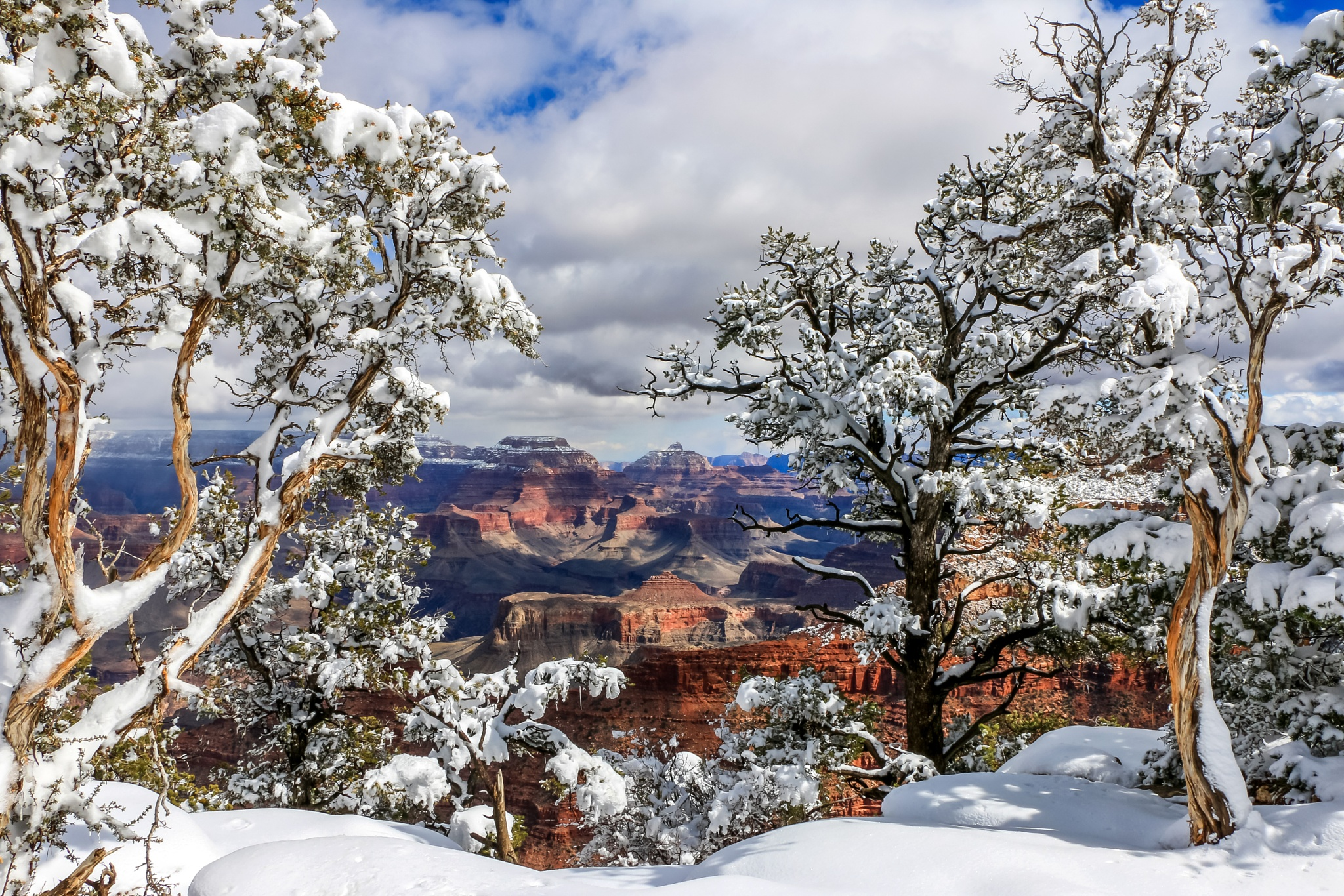 Grand Canyon Snow by dawnrichards