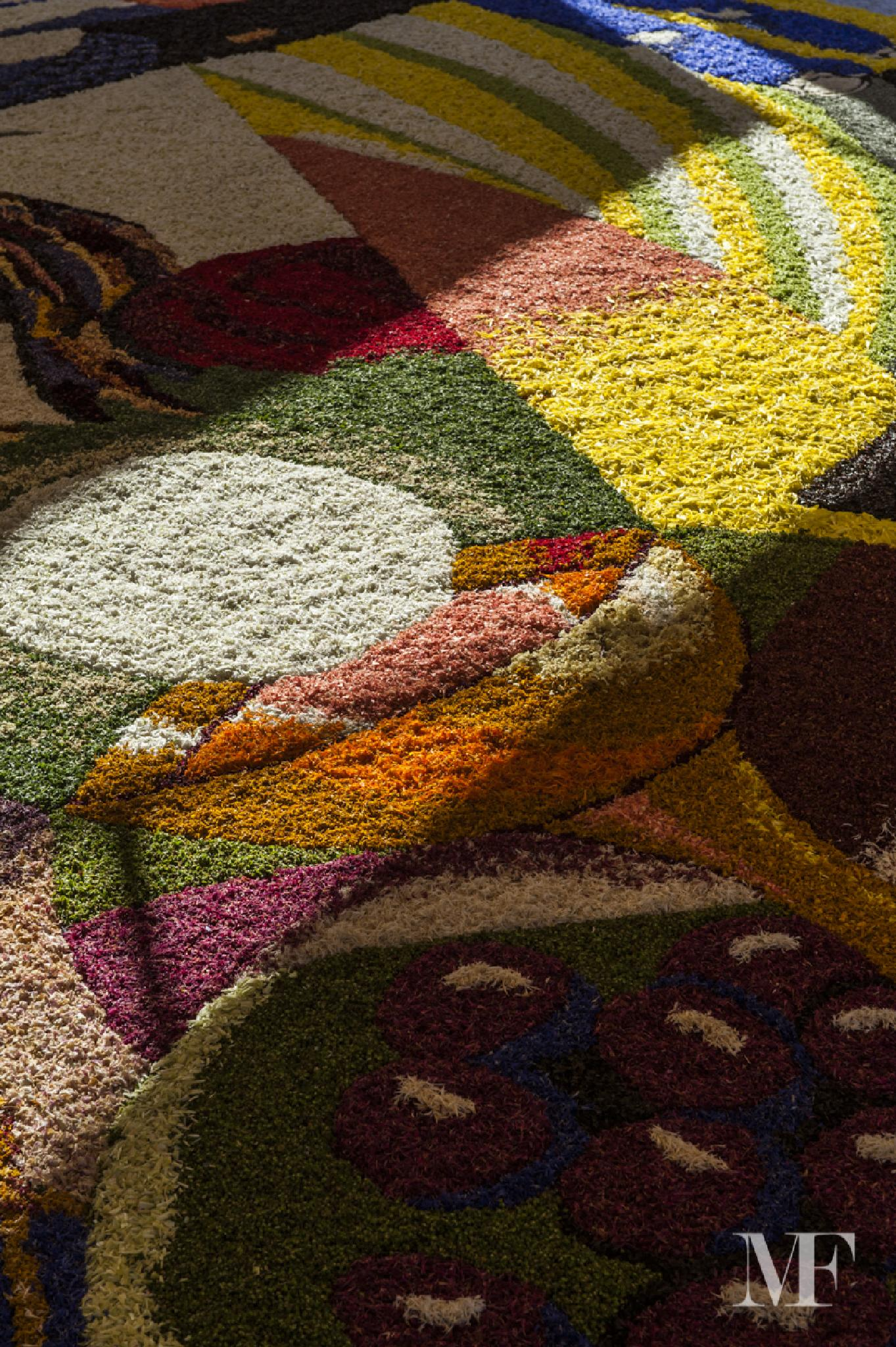 Carpets of flowers truly unique A by moreno faina