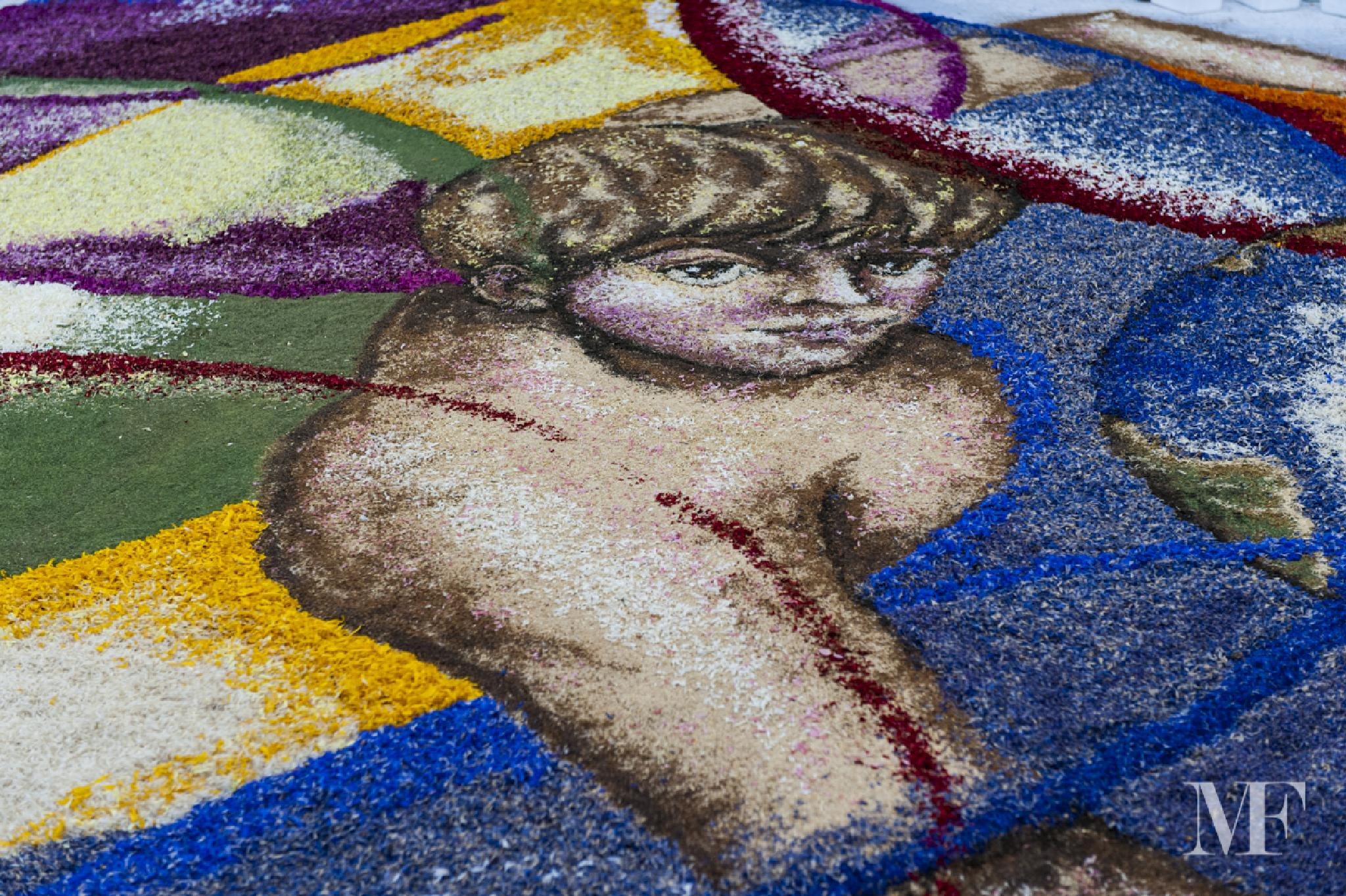 carpets of flowers truly unique B by moreno faina