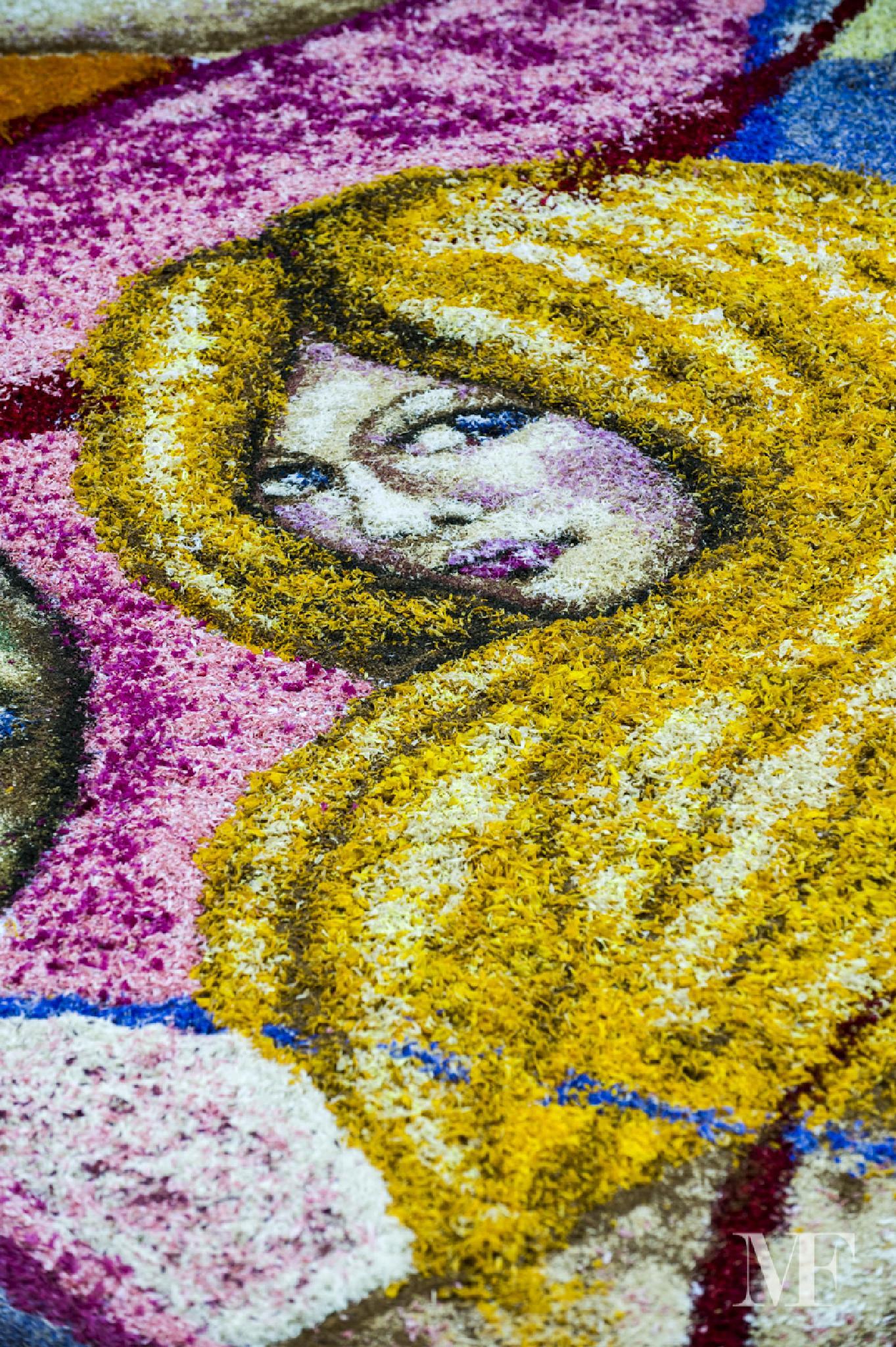 carpets of flowers truly unique E by moreno faina