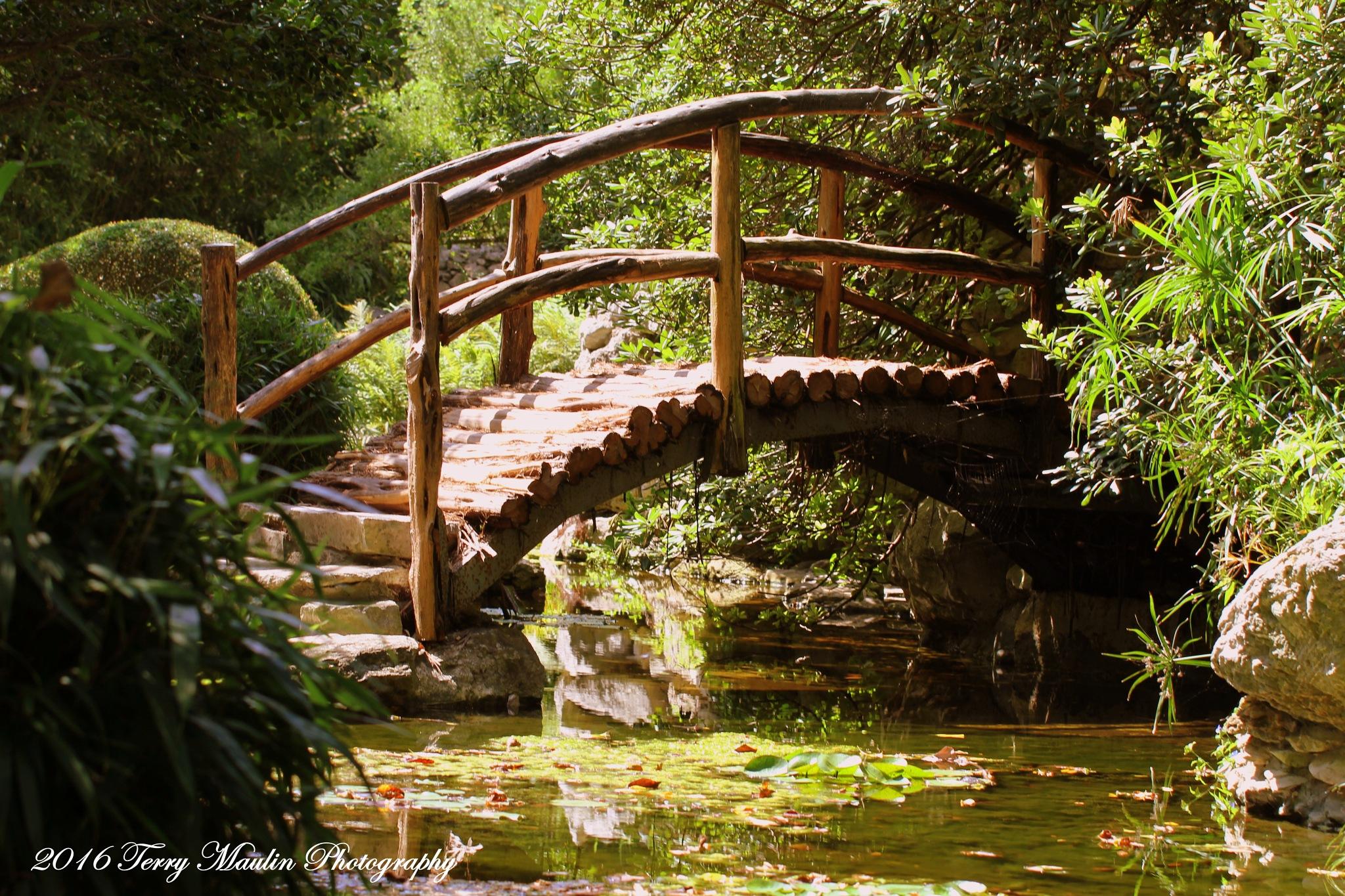 Bridge by TLMPhotography