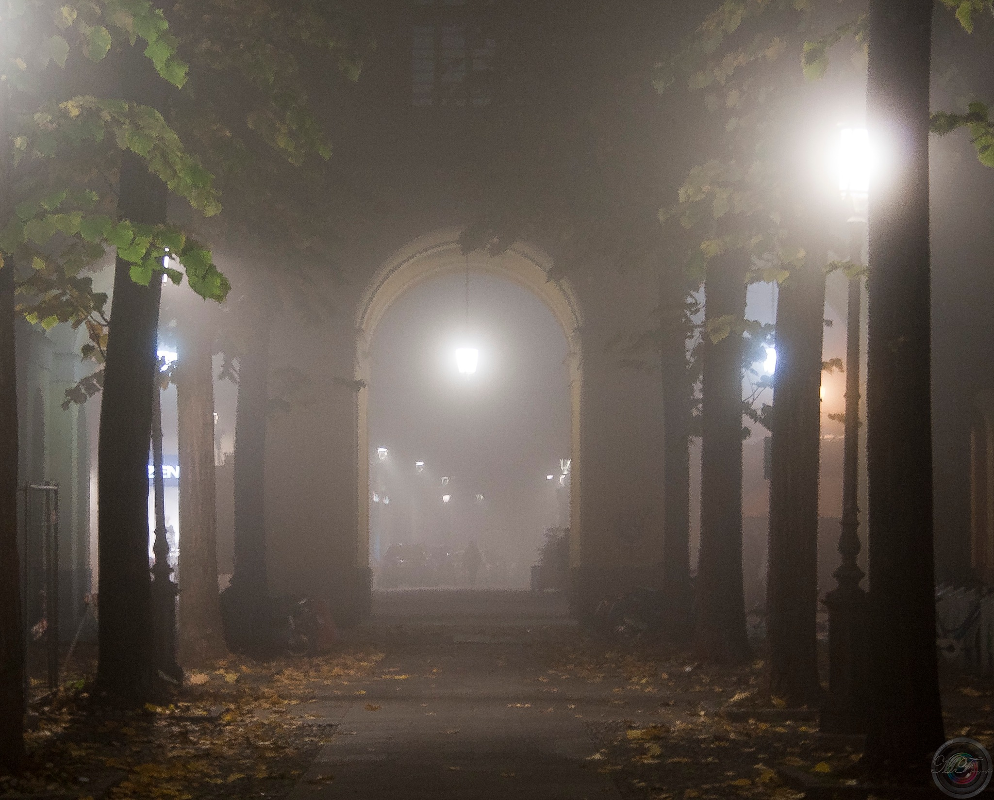 Fog by MFPhotographer