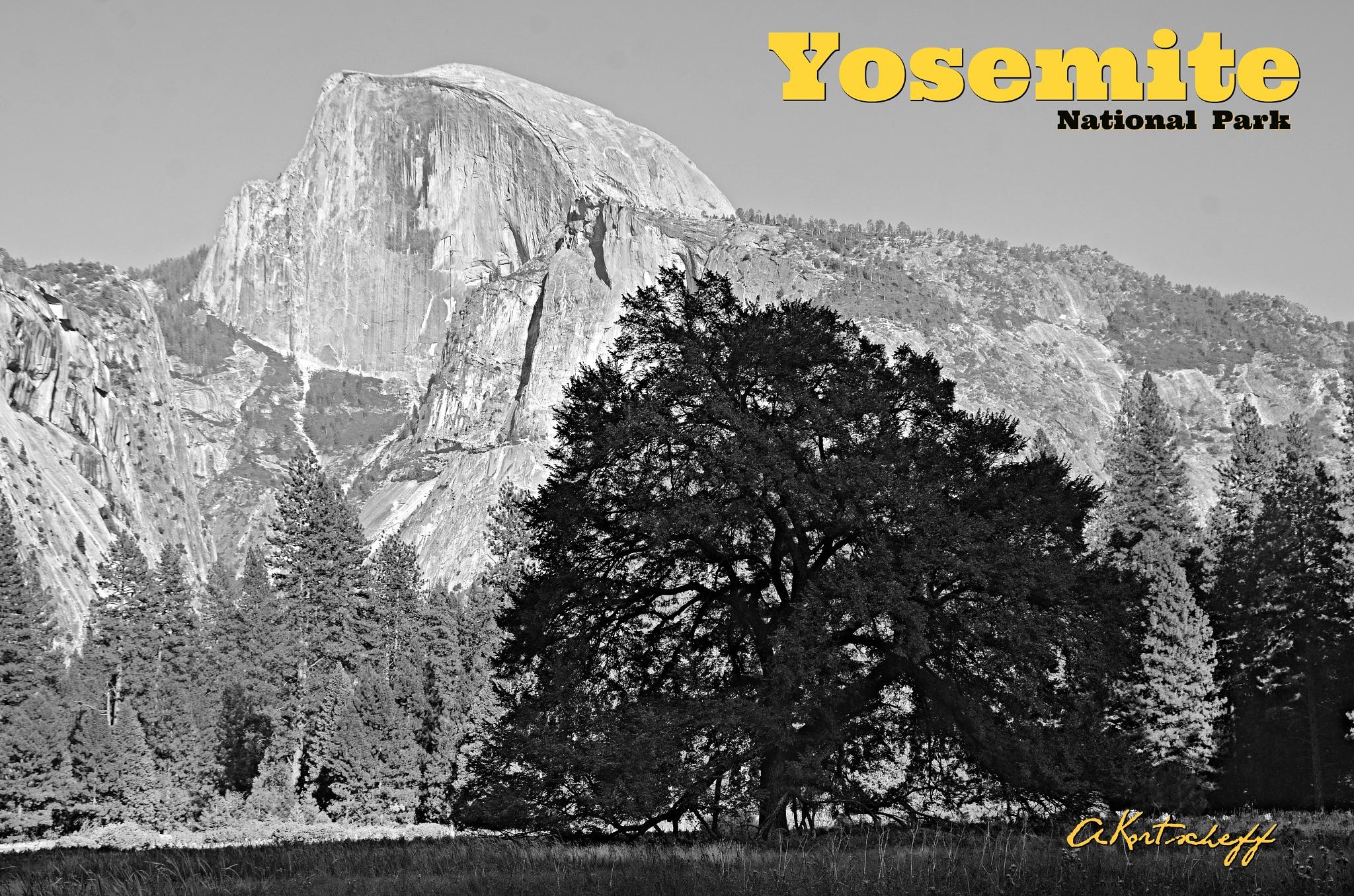 YOSEMITE HALF DOME by akortscheff