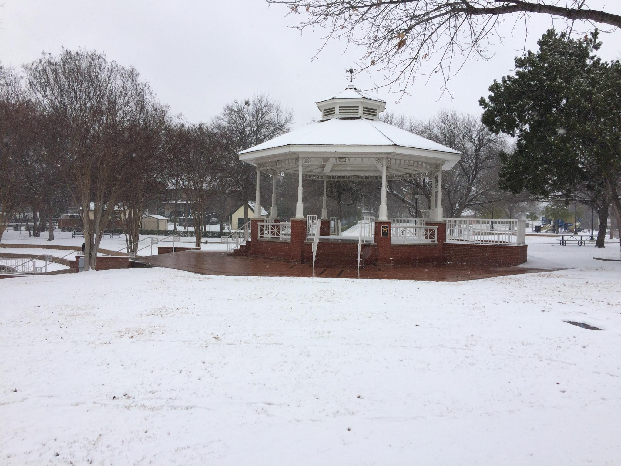 Snow in the park by Greg Lane