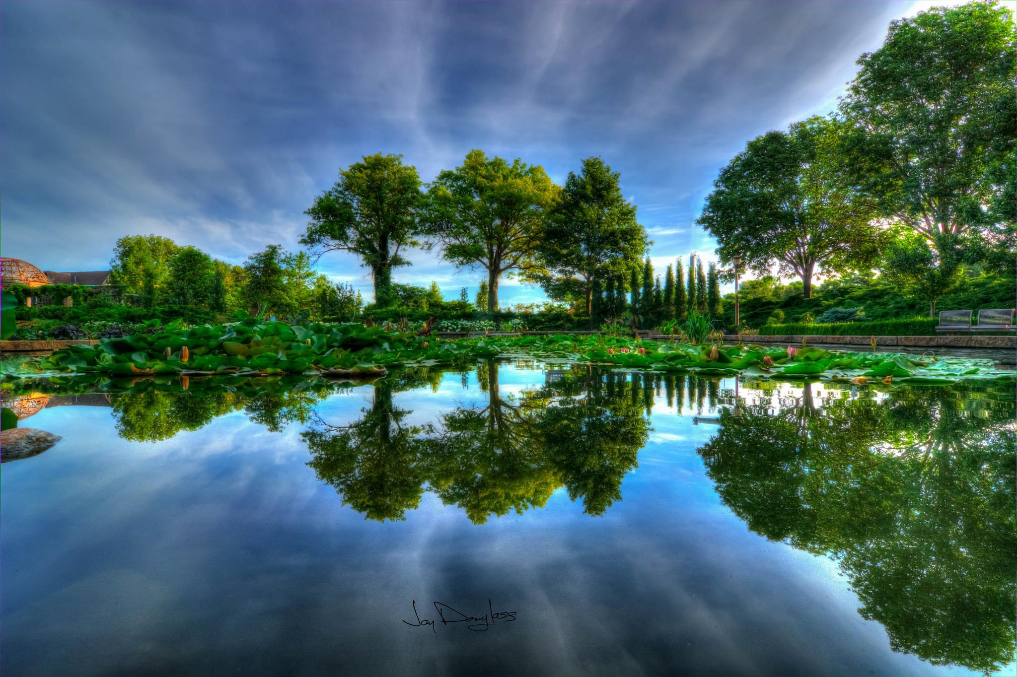 Reflection by Jay Douglass