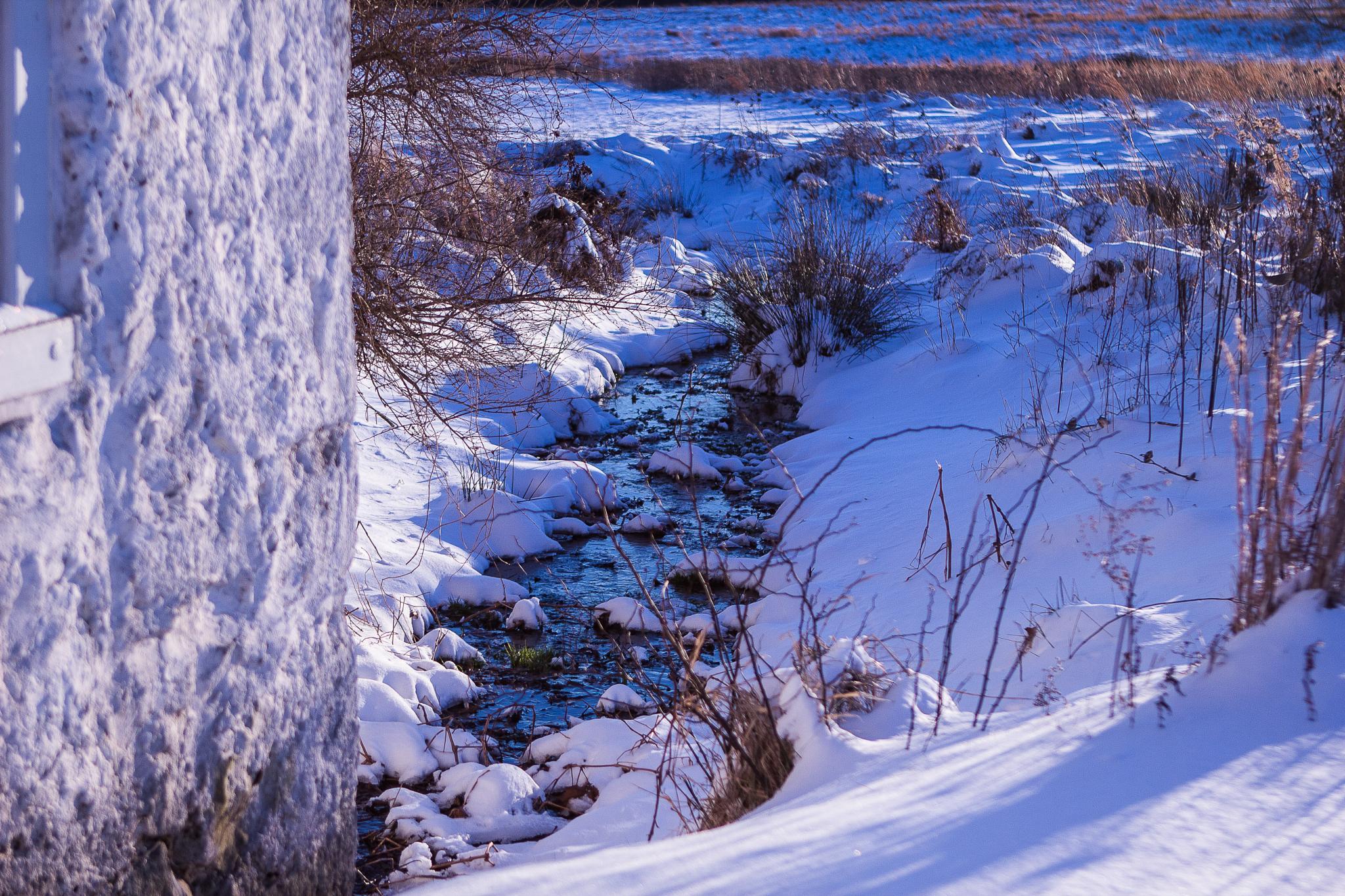 Winter Stream by Don F