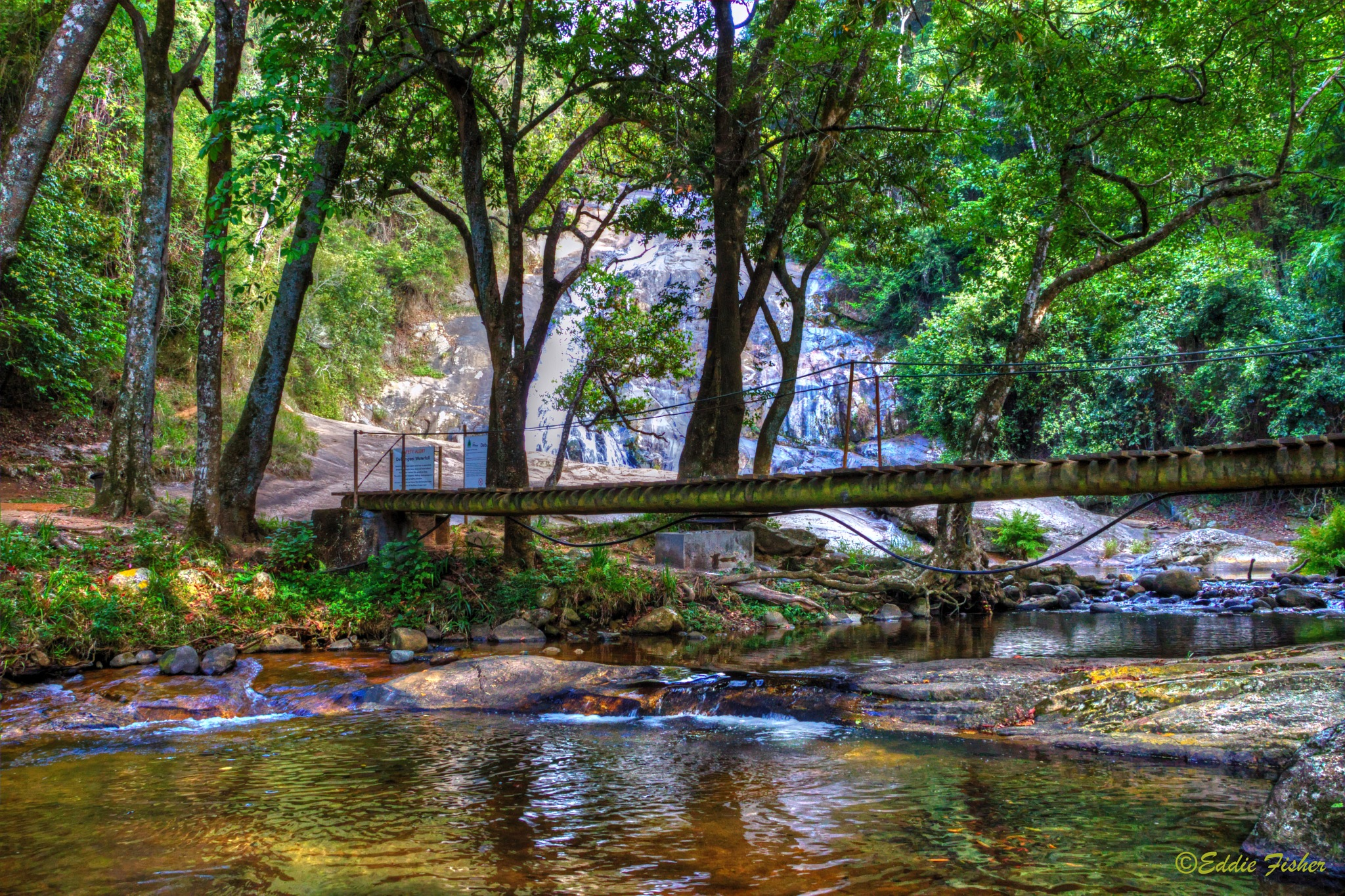 Cool Mountain Stream by eddie.fisher.509