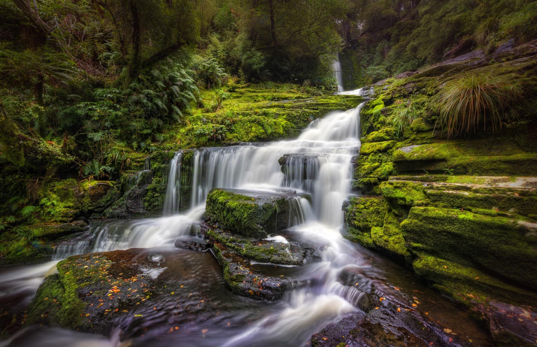 McLean Falls by Alex Tok