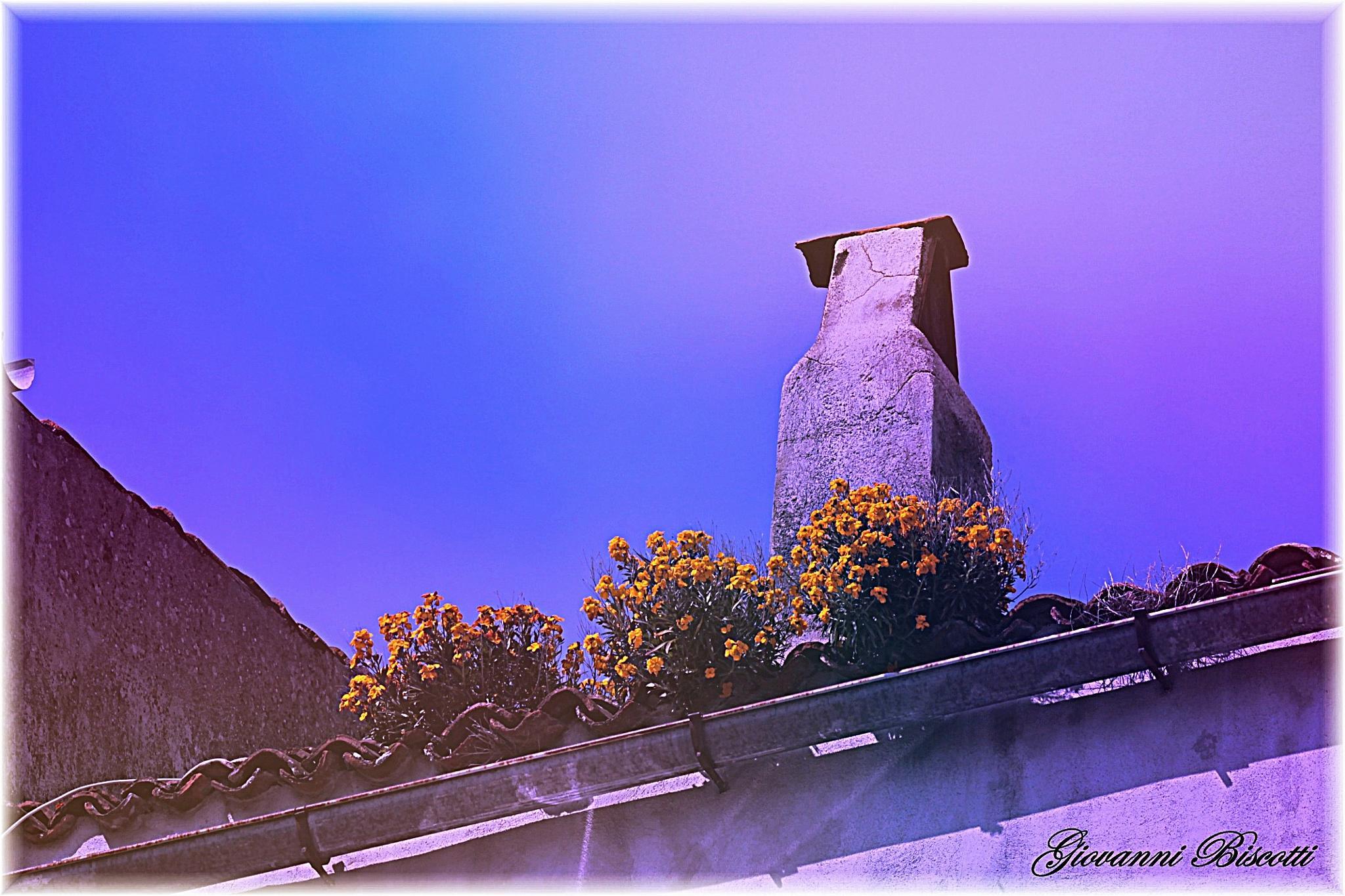 La primavera sui tetti del mio borgo. by giovanni.biscotti.14