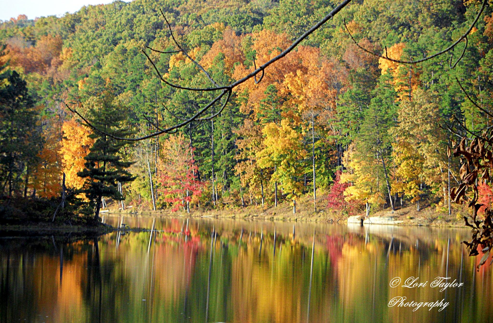 Lake Hope by Lori21929