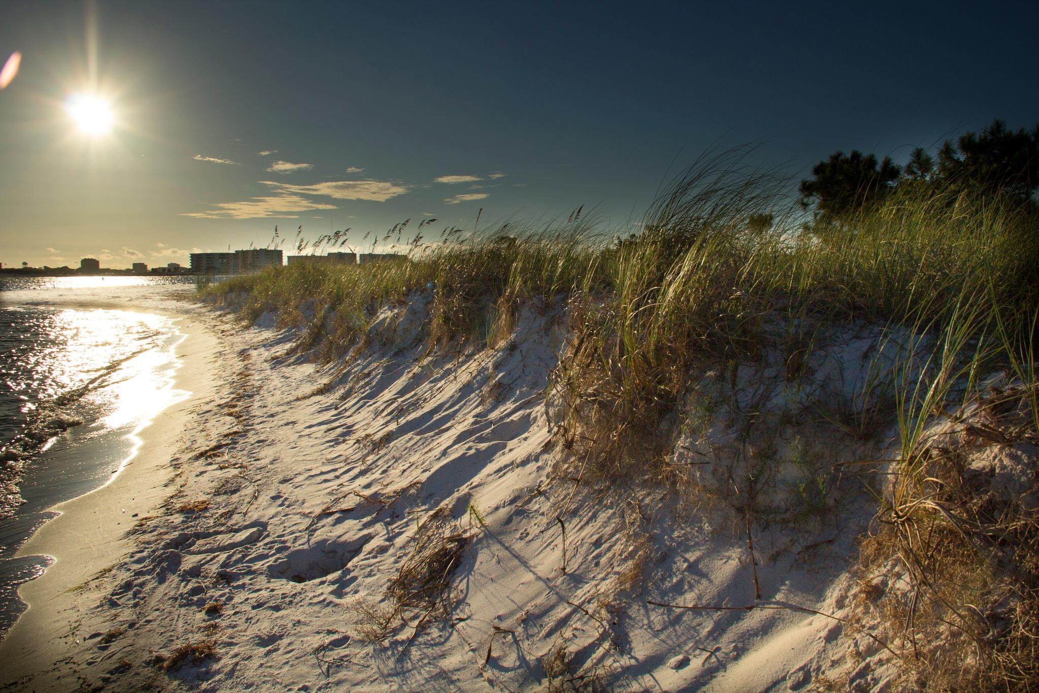 Sunrise on the dunes by Tony Stephens
