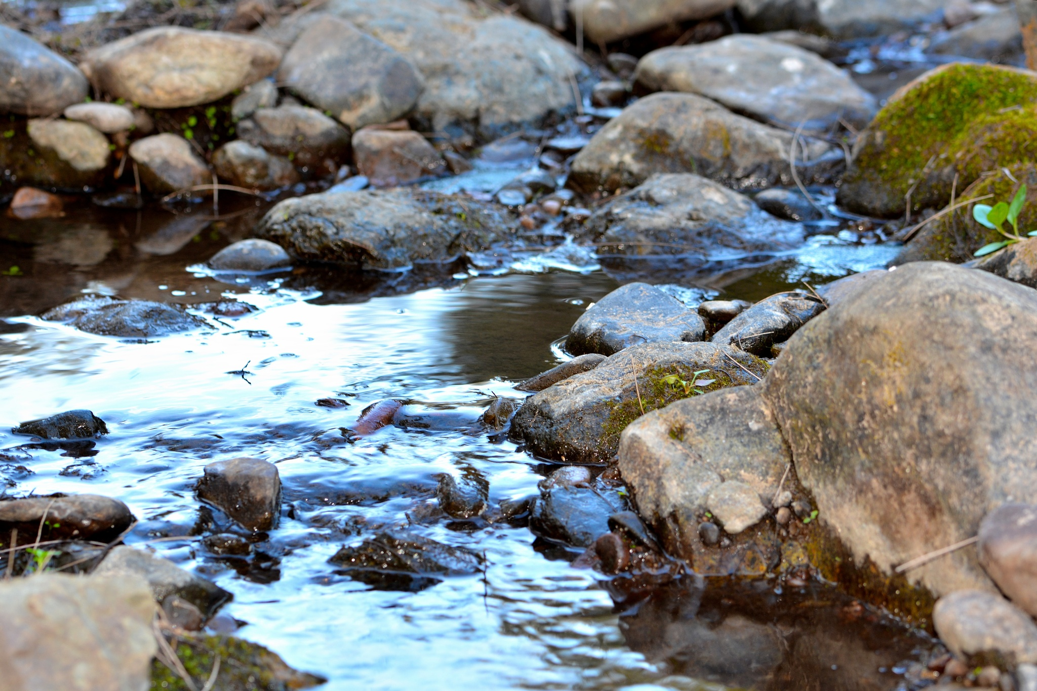 Yes there is water amongst the rocks by valli.hemp