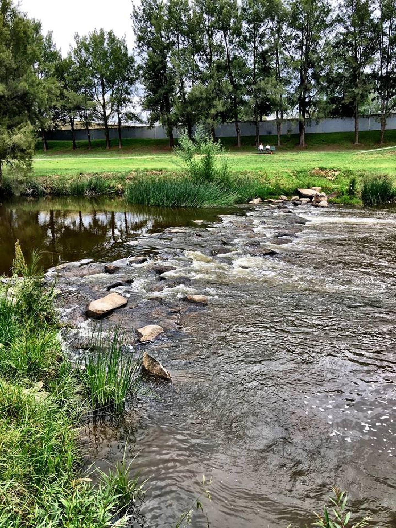 The Beautifully Green Macquarie River Park by valli.hemp