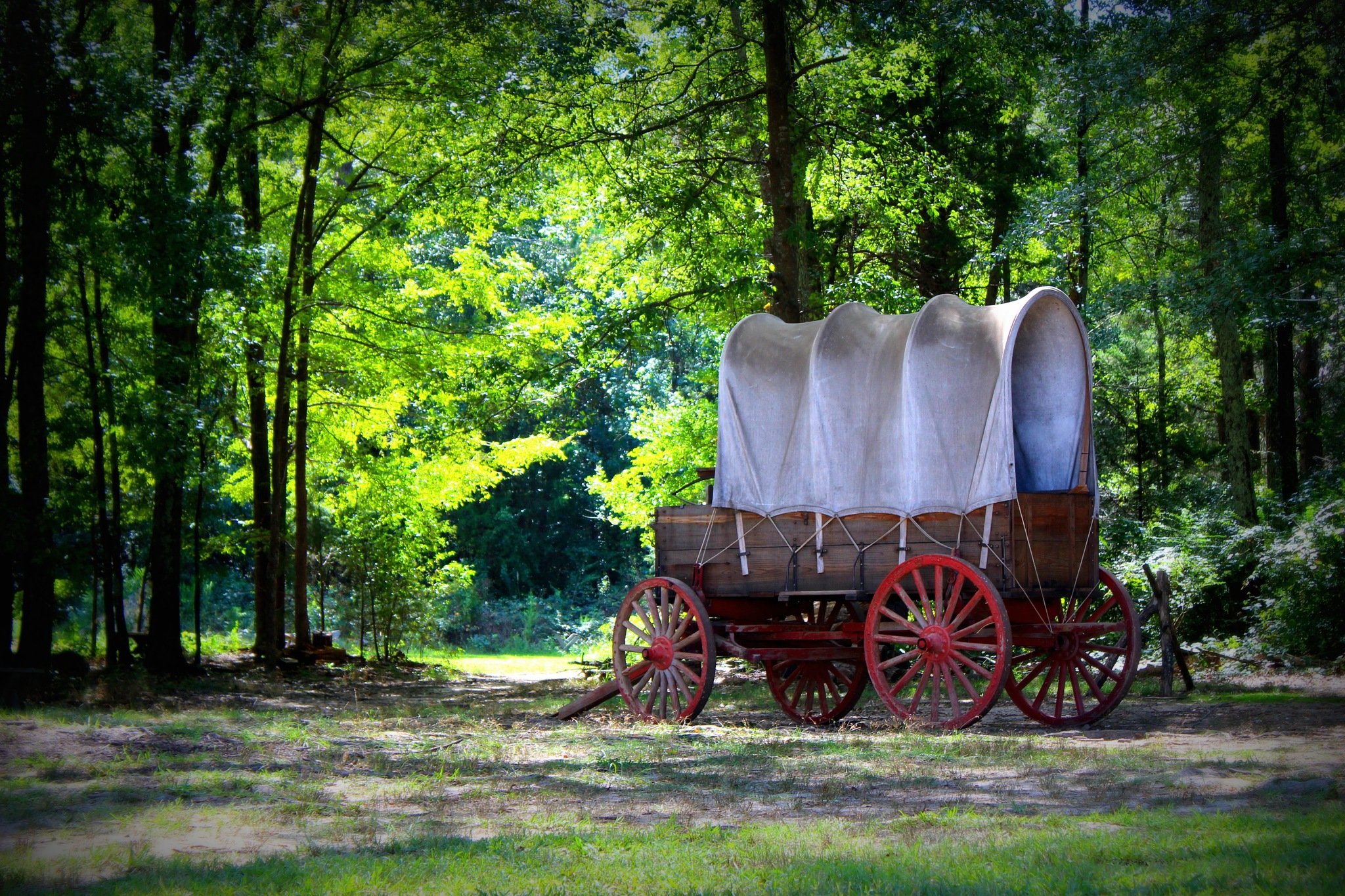 Covered wagon by becky.c.jones.3