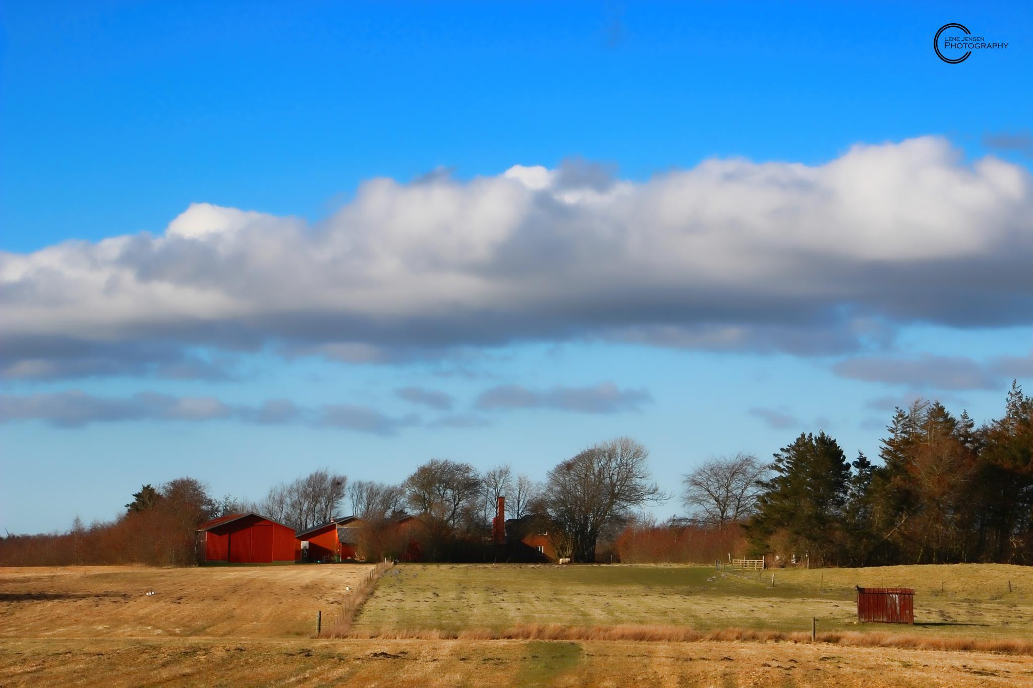 Dreamland by lenejohansen969