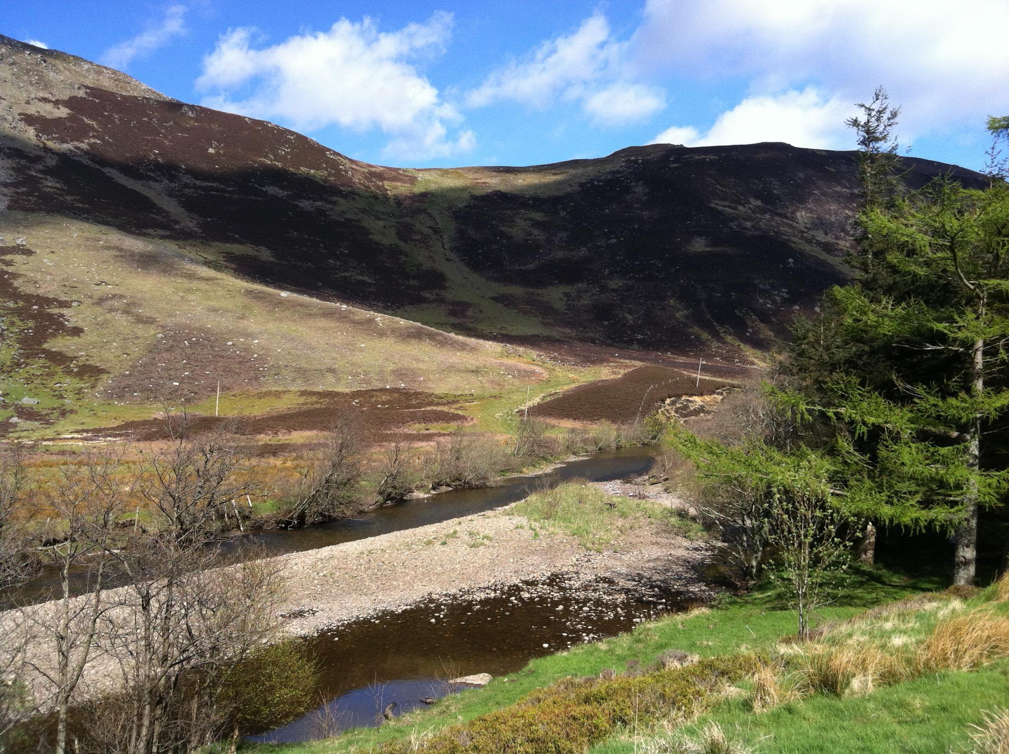 Scottish highlands by Litzenbauer