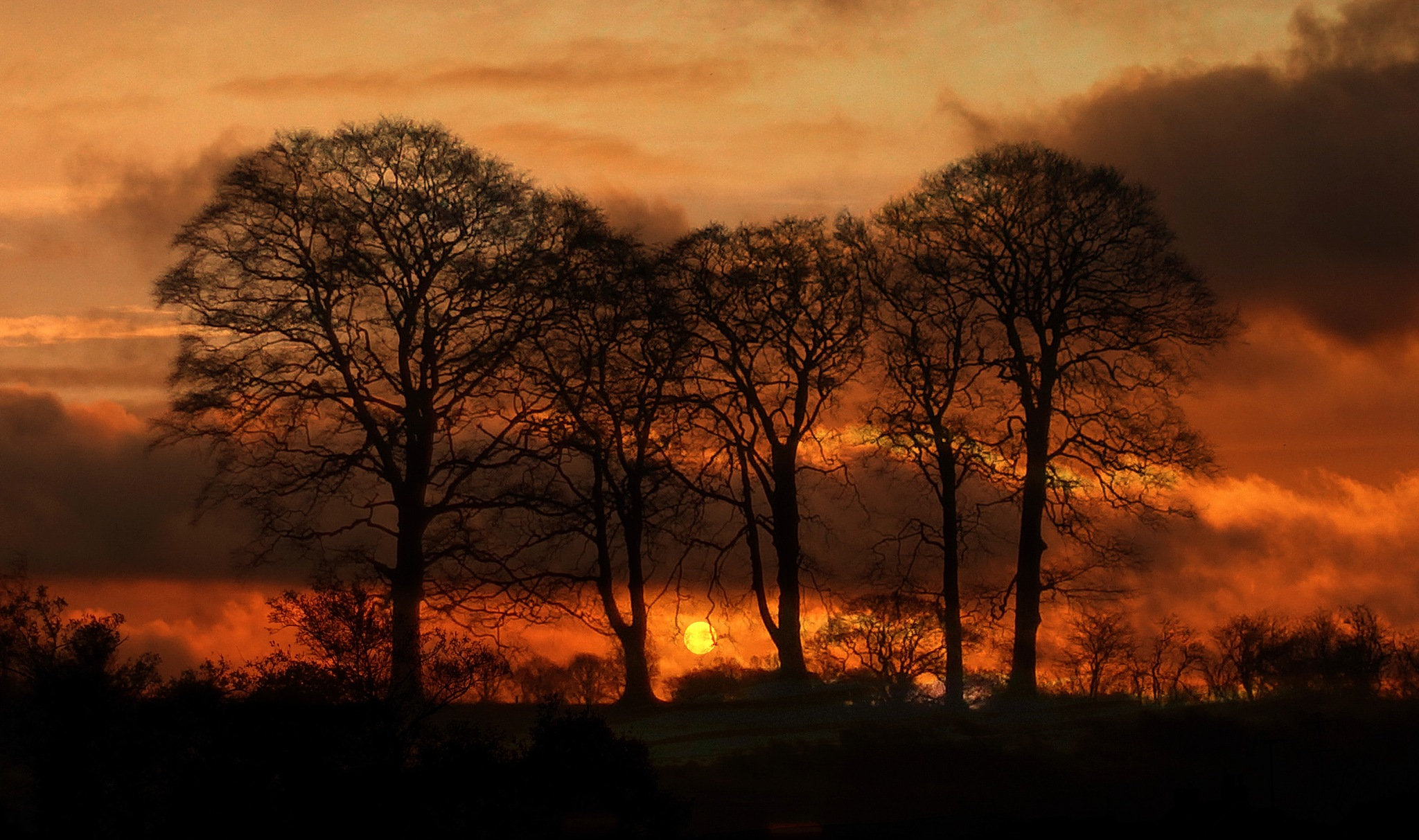 Nature on fire: Cheshire sunrise by NavidQureshi