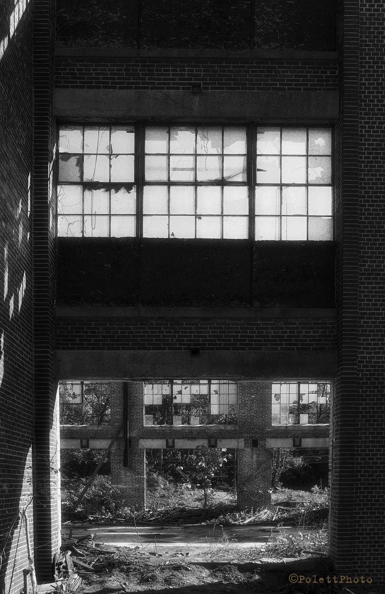 Windows 1 by Polettphoto