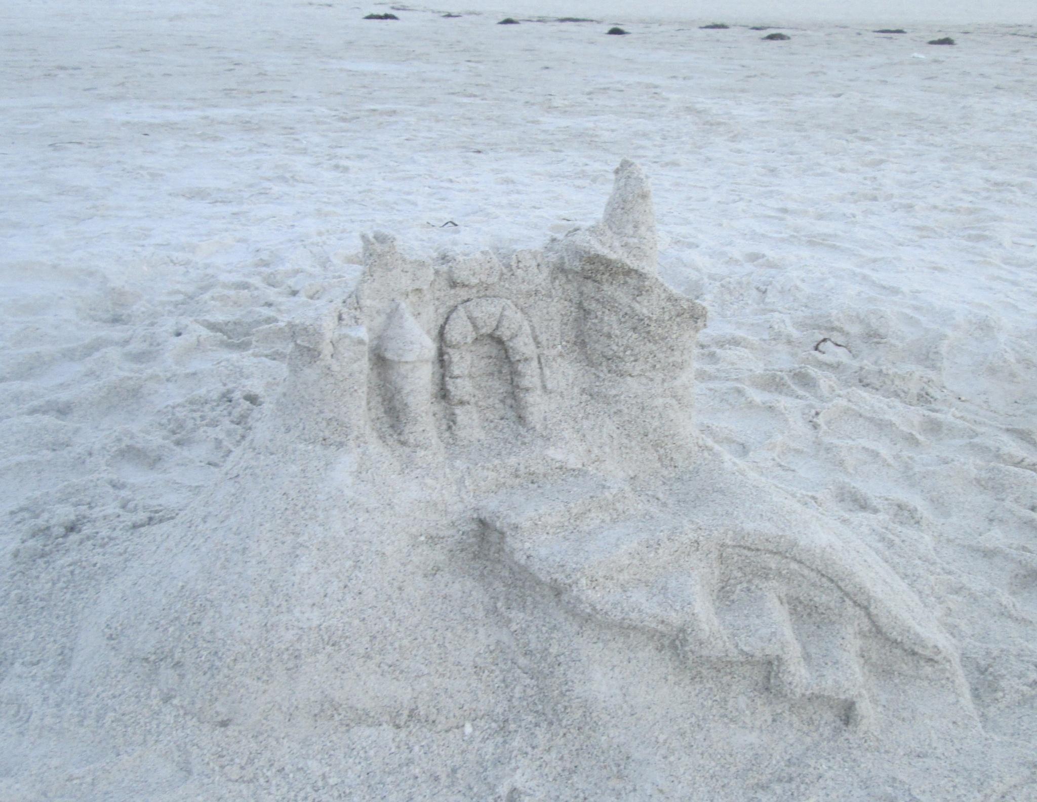 sand castle by pamela.kanarr