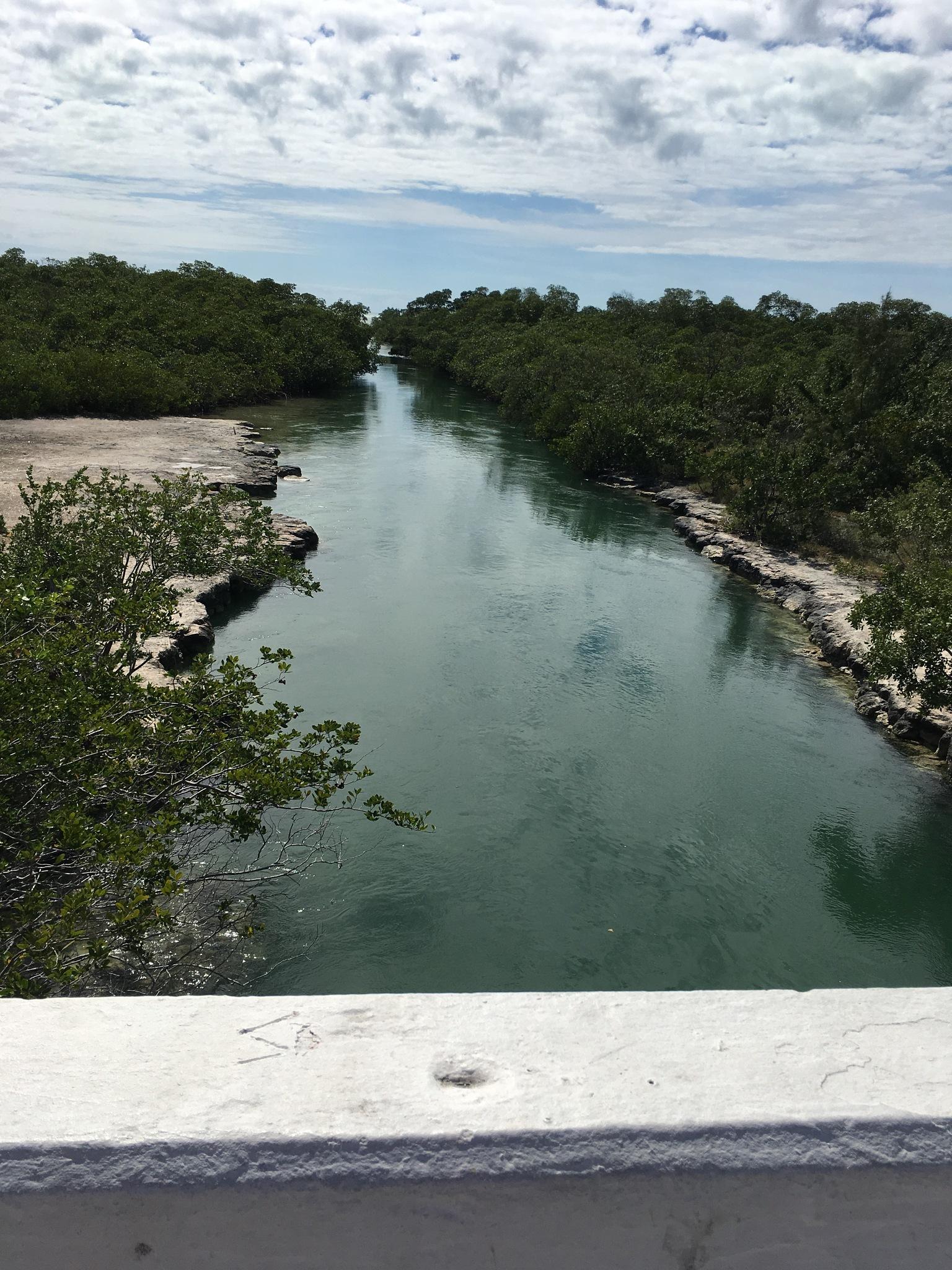 View from the bridge  by pamela.kanarr