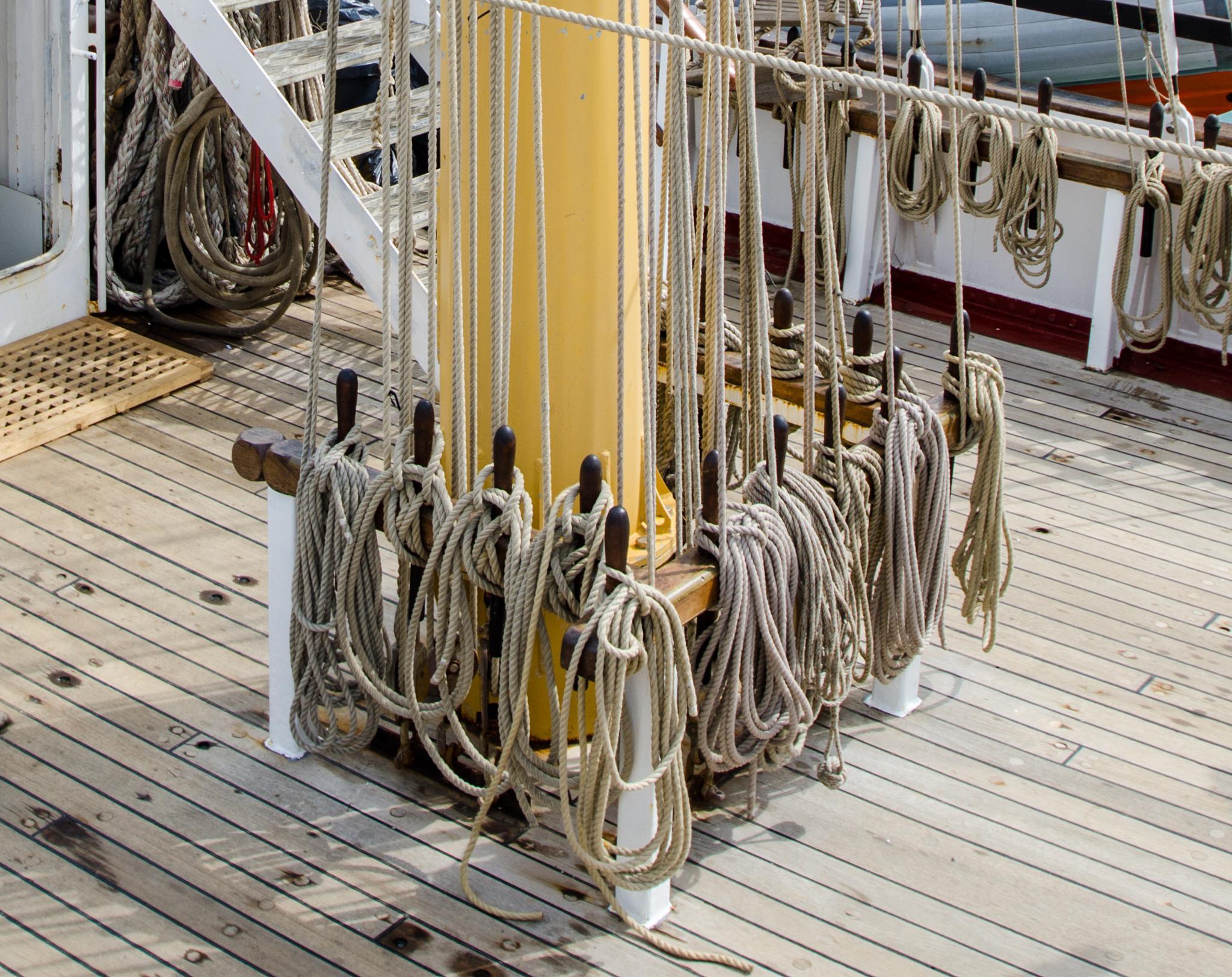 Ropes by Tony Bridges