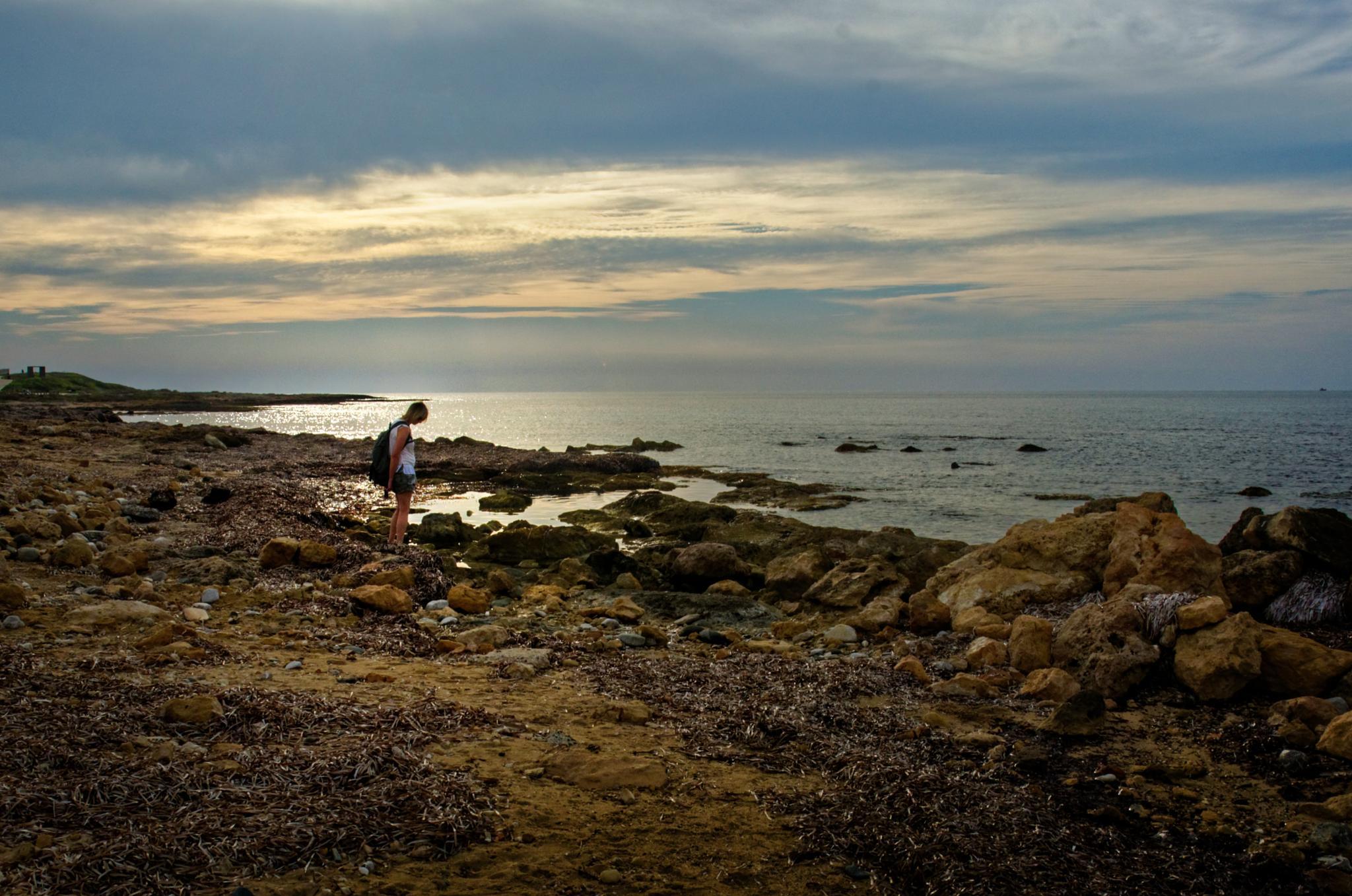 Evening Rockpooling by Tony Bridges