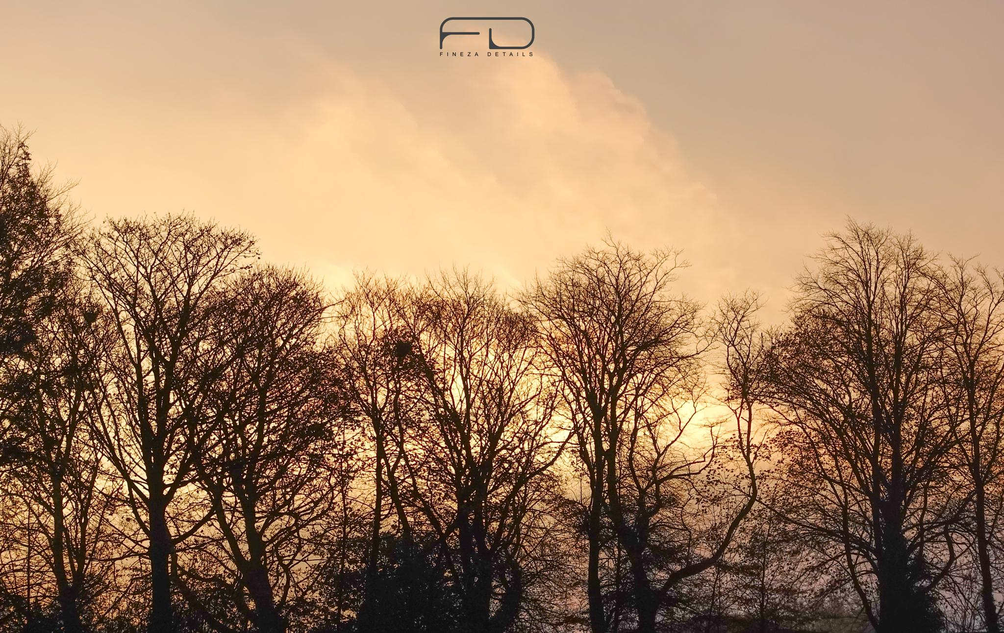 Dawn in Halifax by Khalid_Fineza  Details