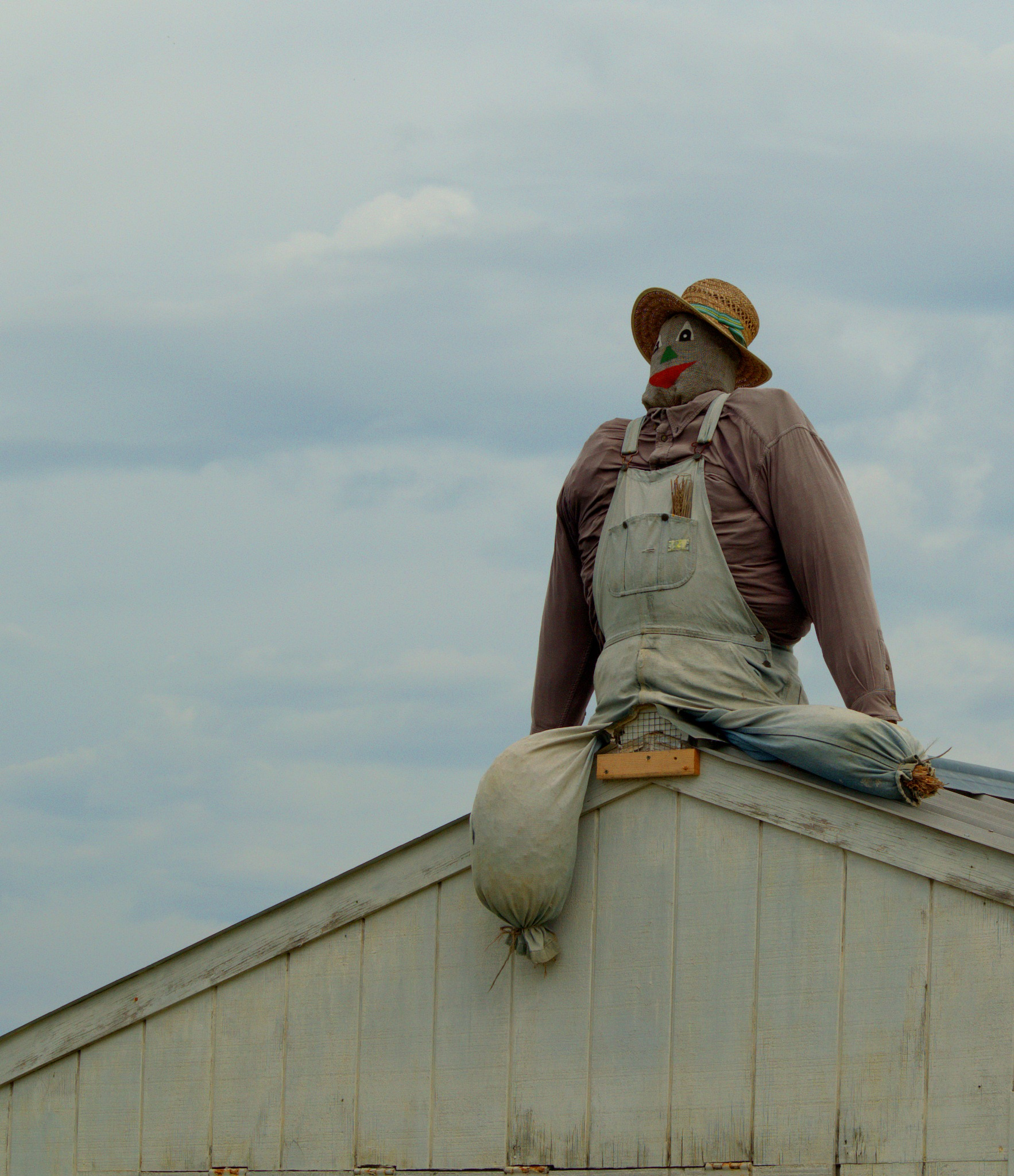 Roof man. by Tegrey