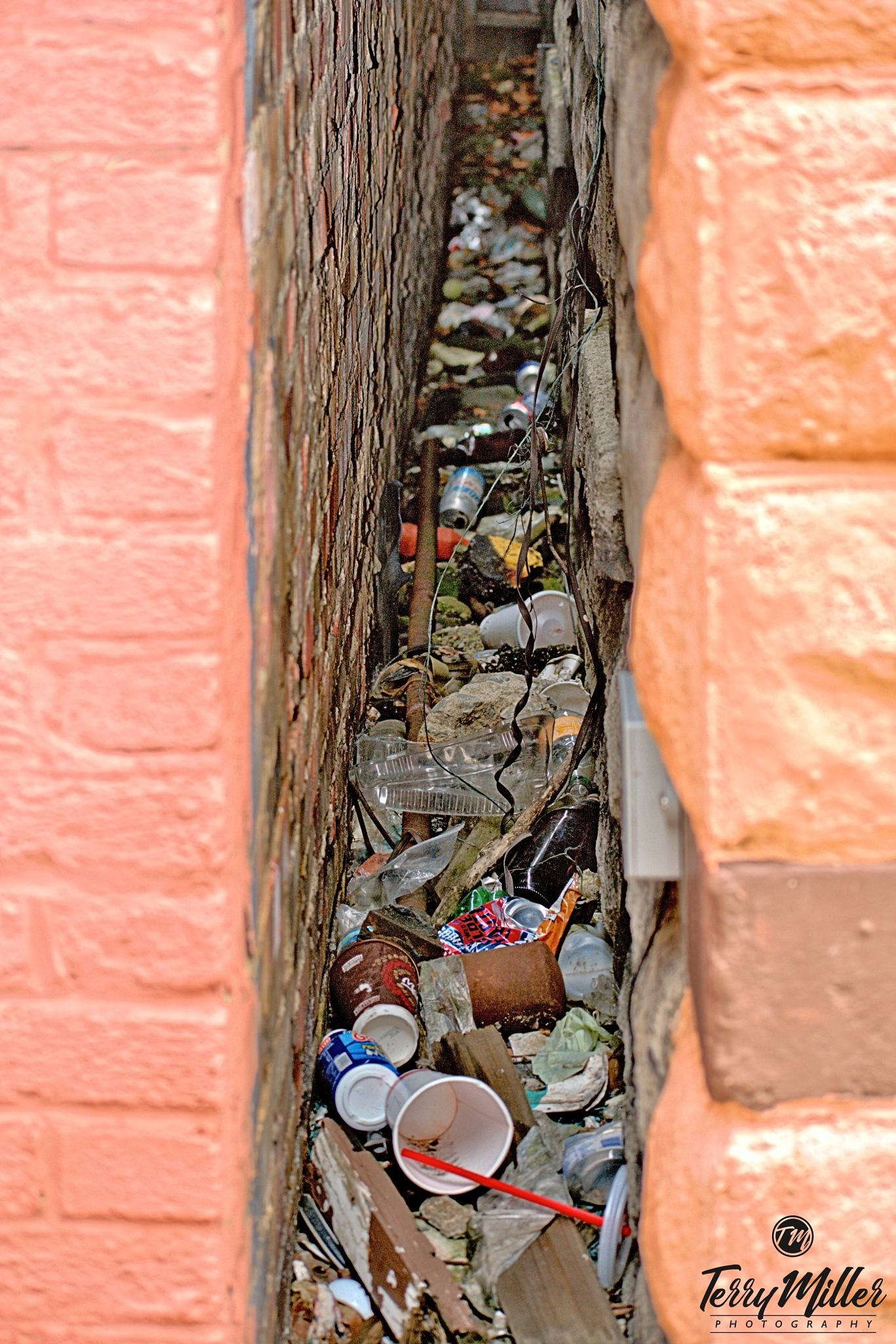 Trash by Tegrey