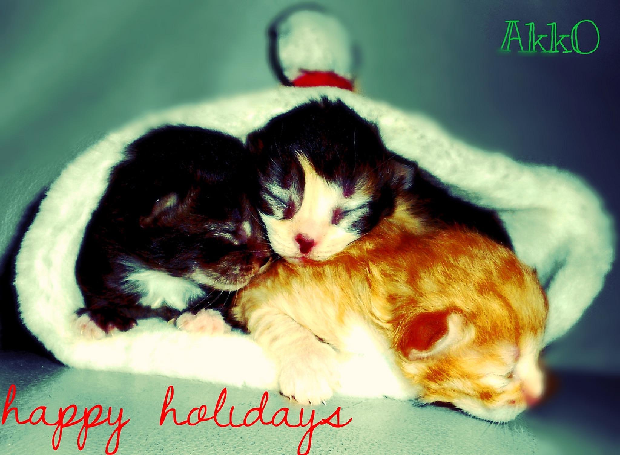 happy holidays by annvanaken.putartann