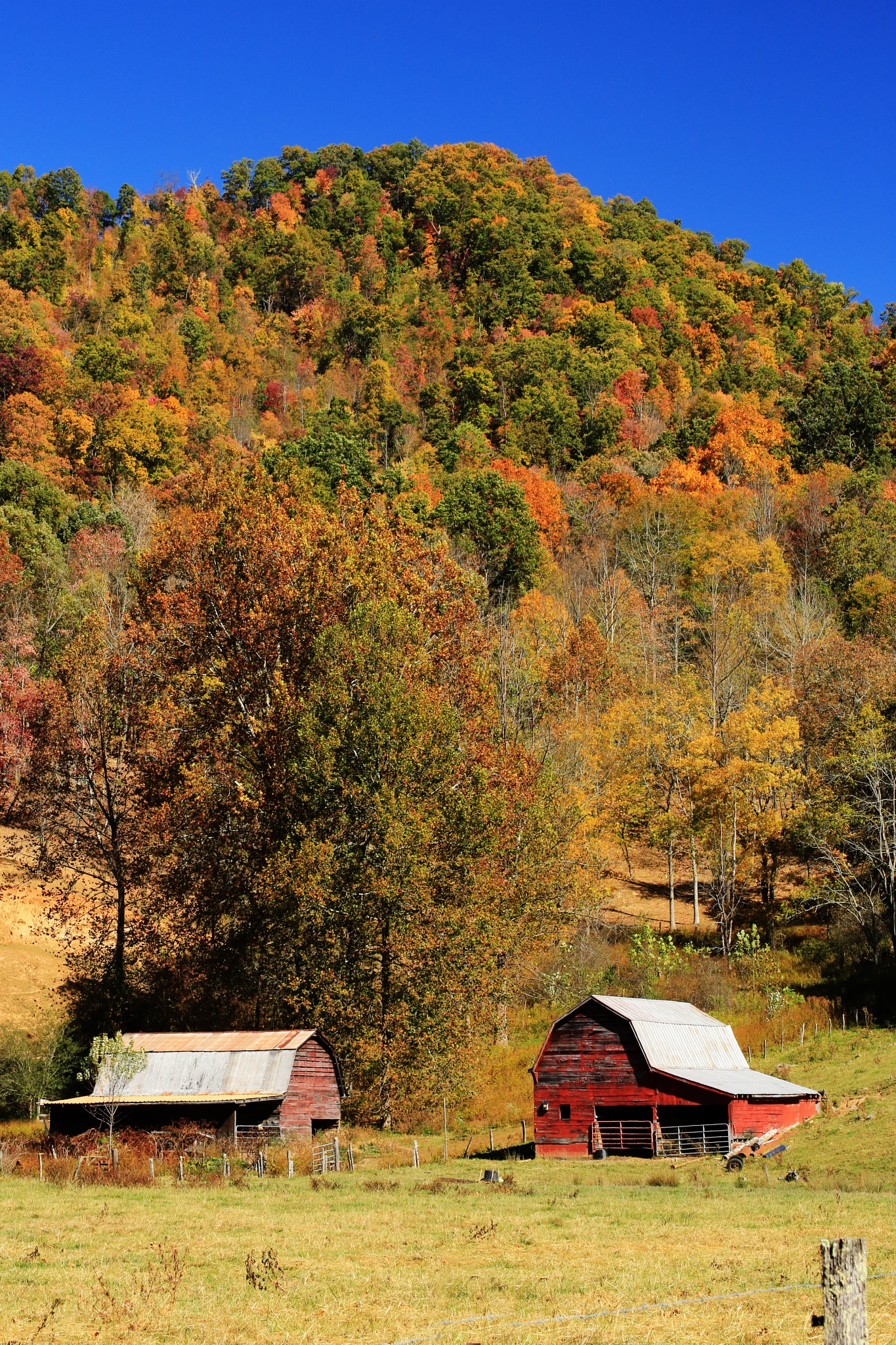 Double barn by portillo45