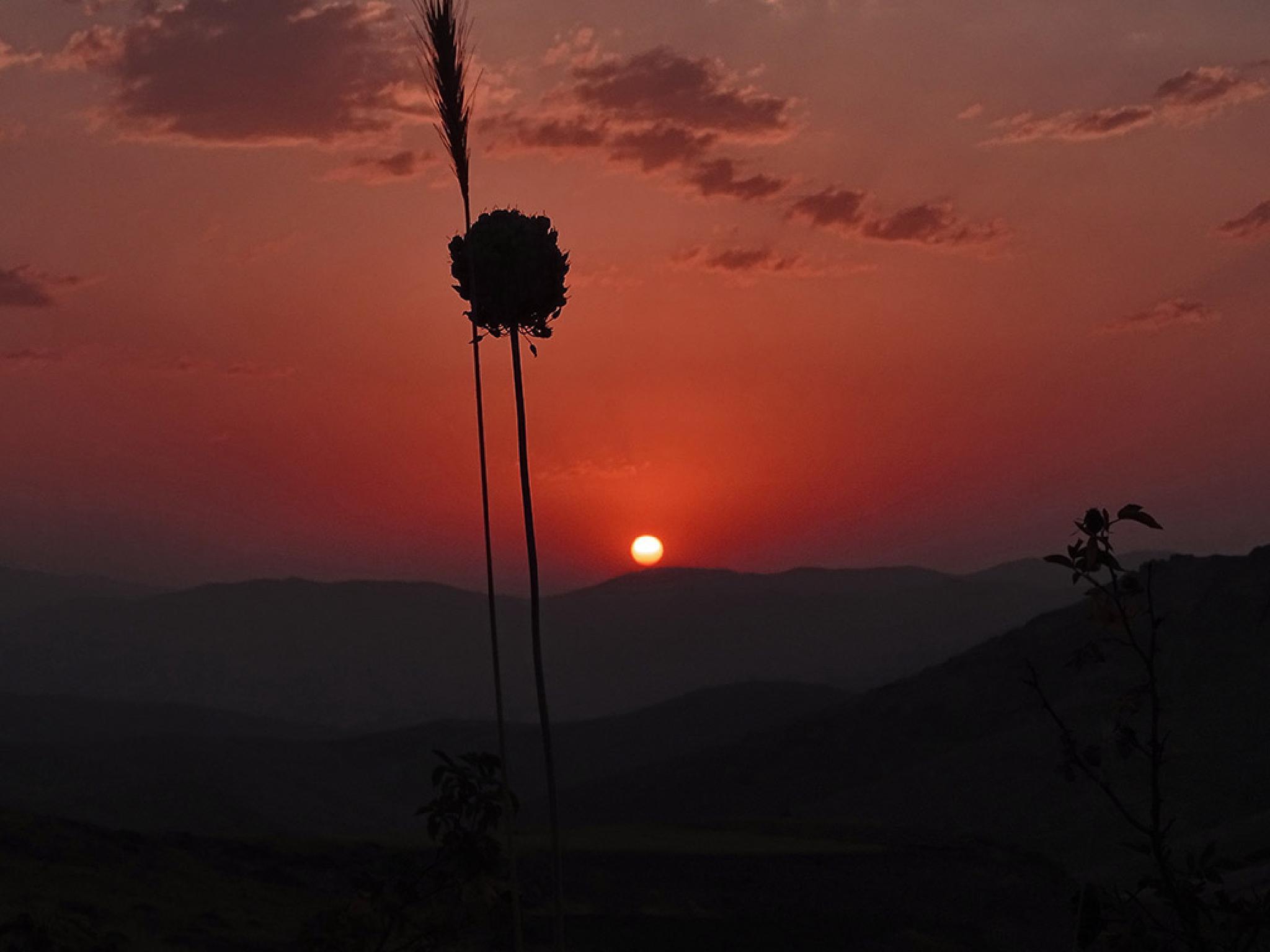 Sunset by Jamal 4 Rojava