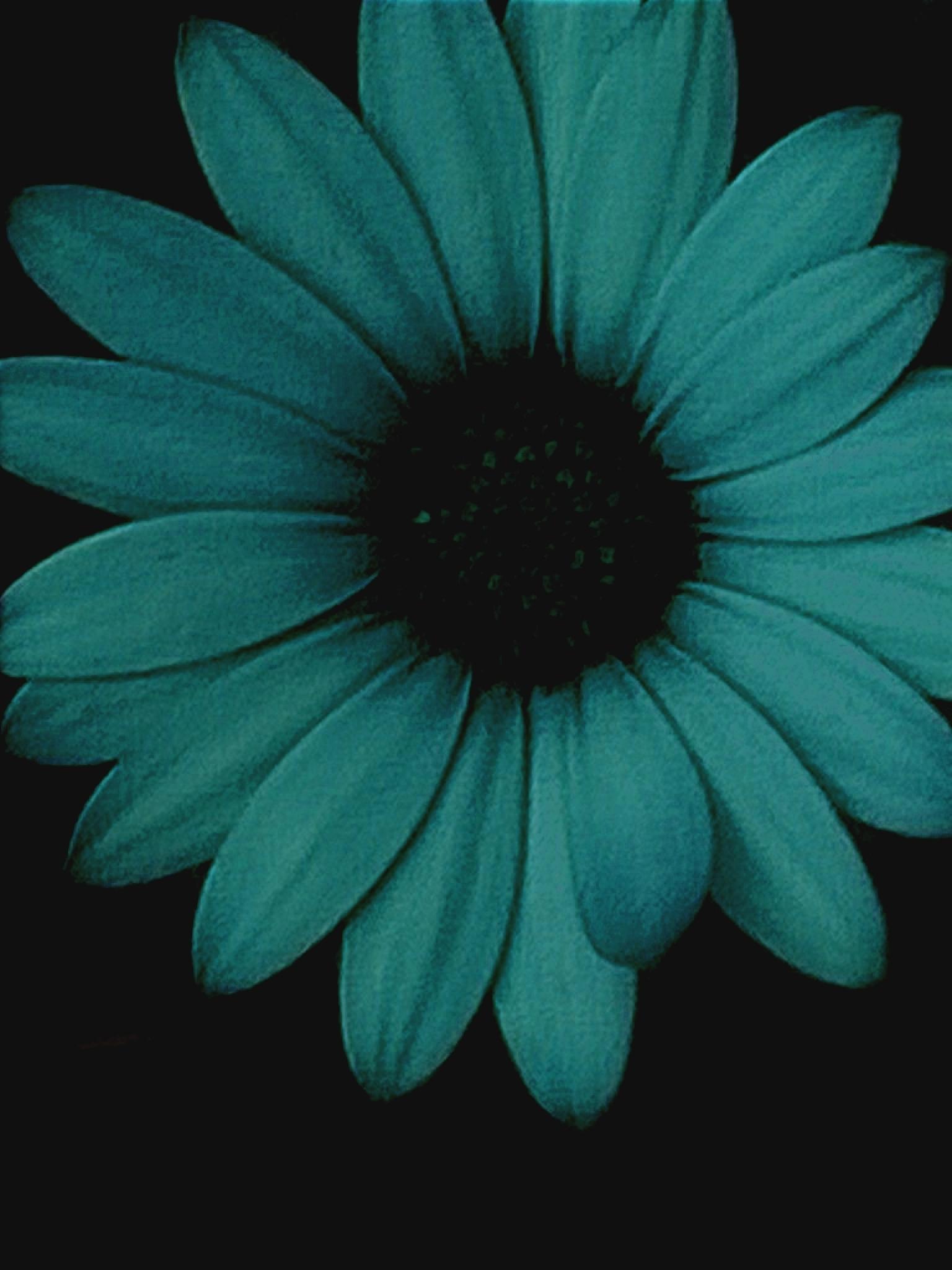 Blue Flower by gemma smith
