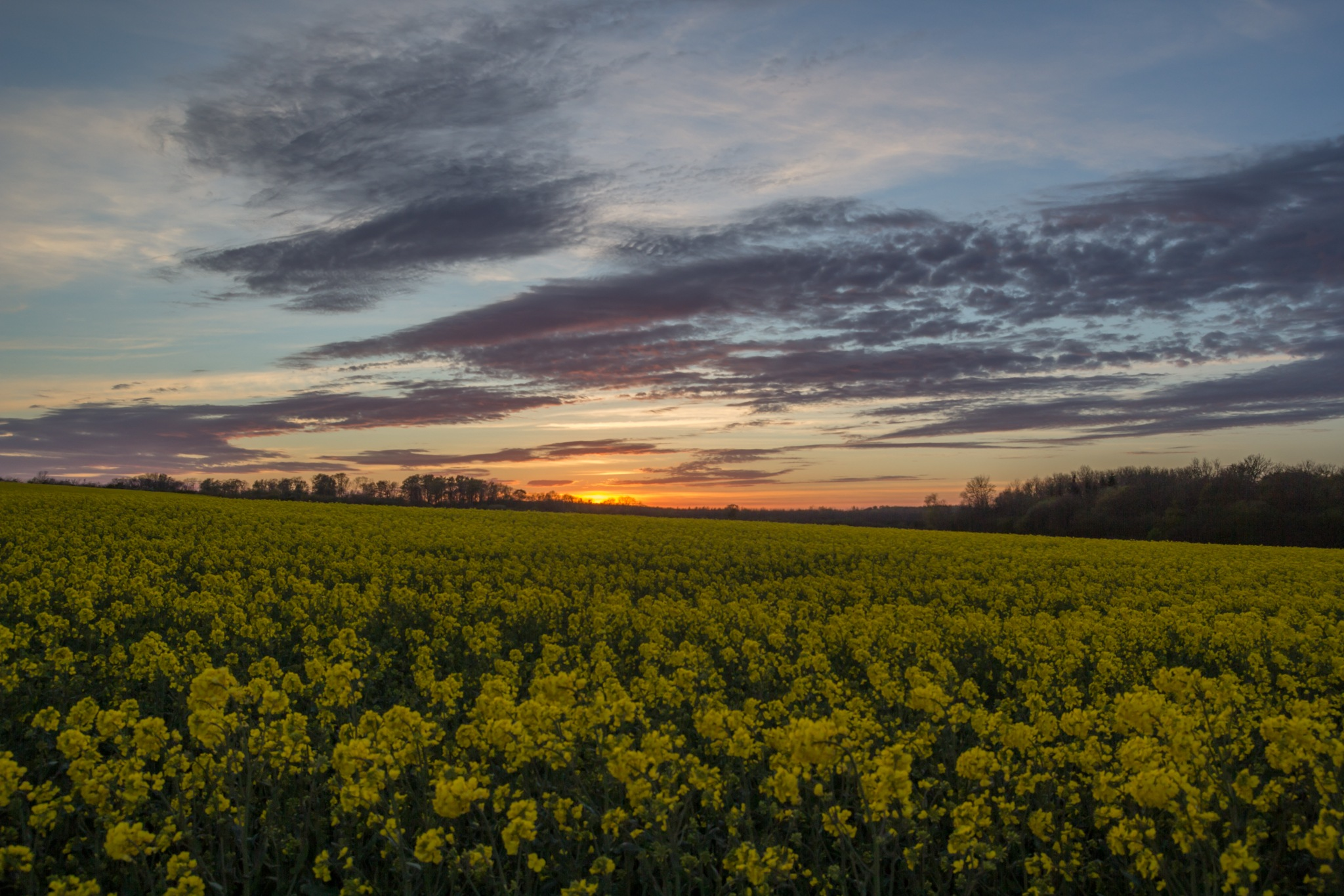 Sunset in south Denmark by Kjeld Jensen